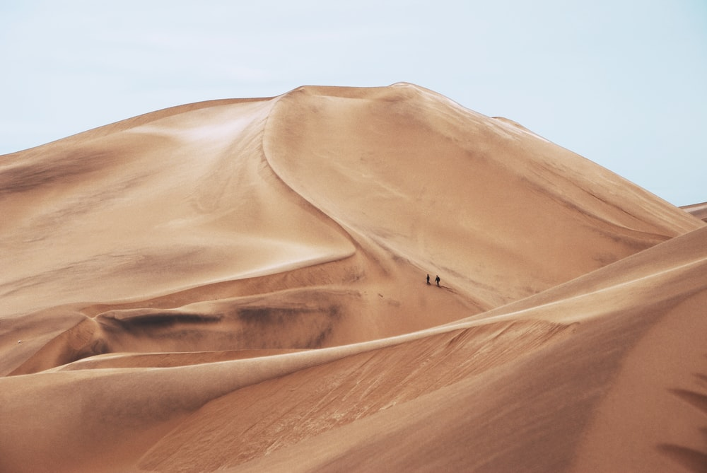 two people standing in desert field during daytime