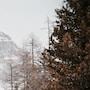 Val di Susa su un gruppo di sciatori cala la valanga, due vittime