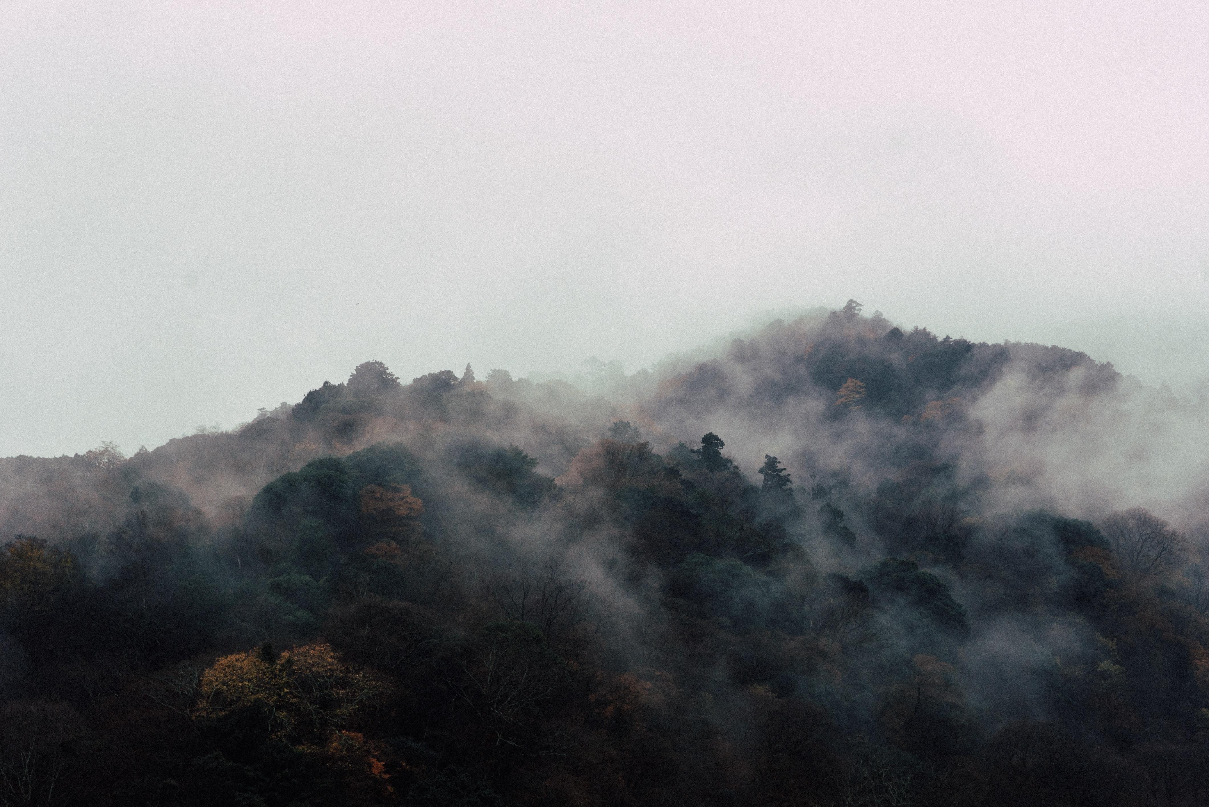 A morning haze over wooded hills in Arashiyama