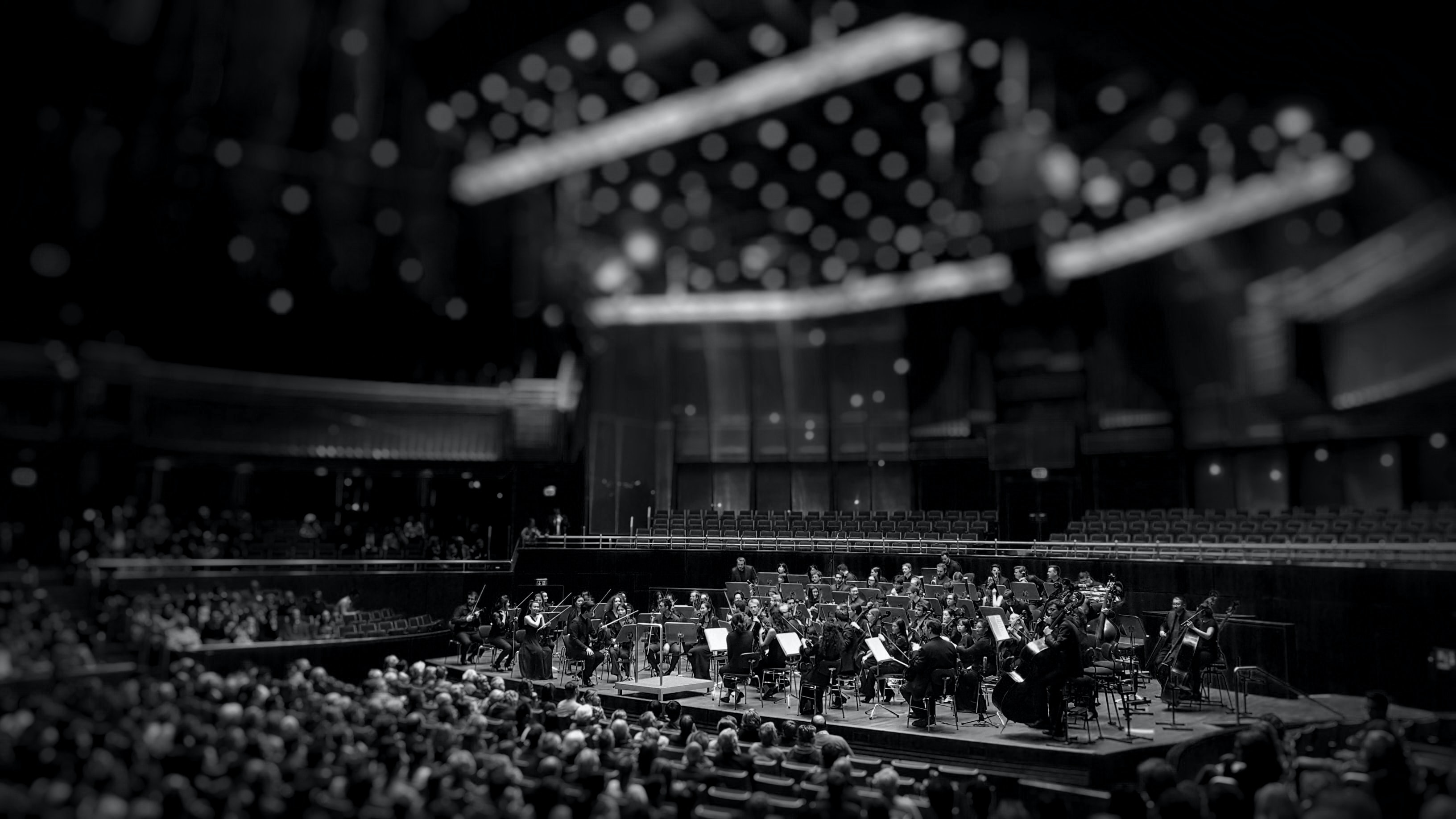 A black-and-white shot of an orchestra performing on stage in a concert hall