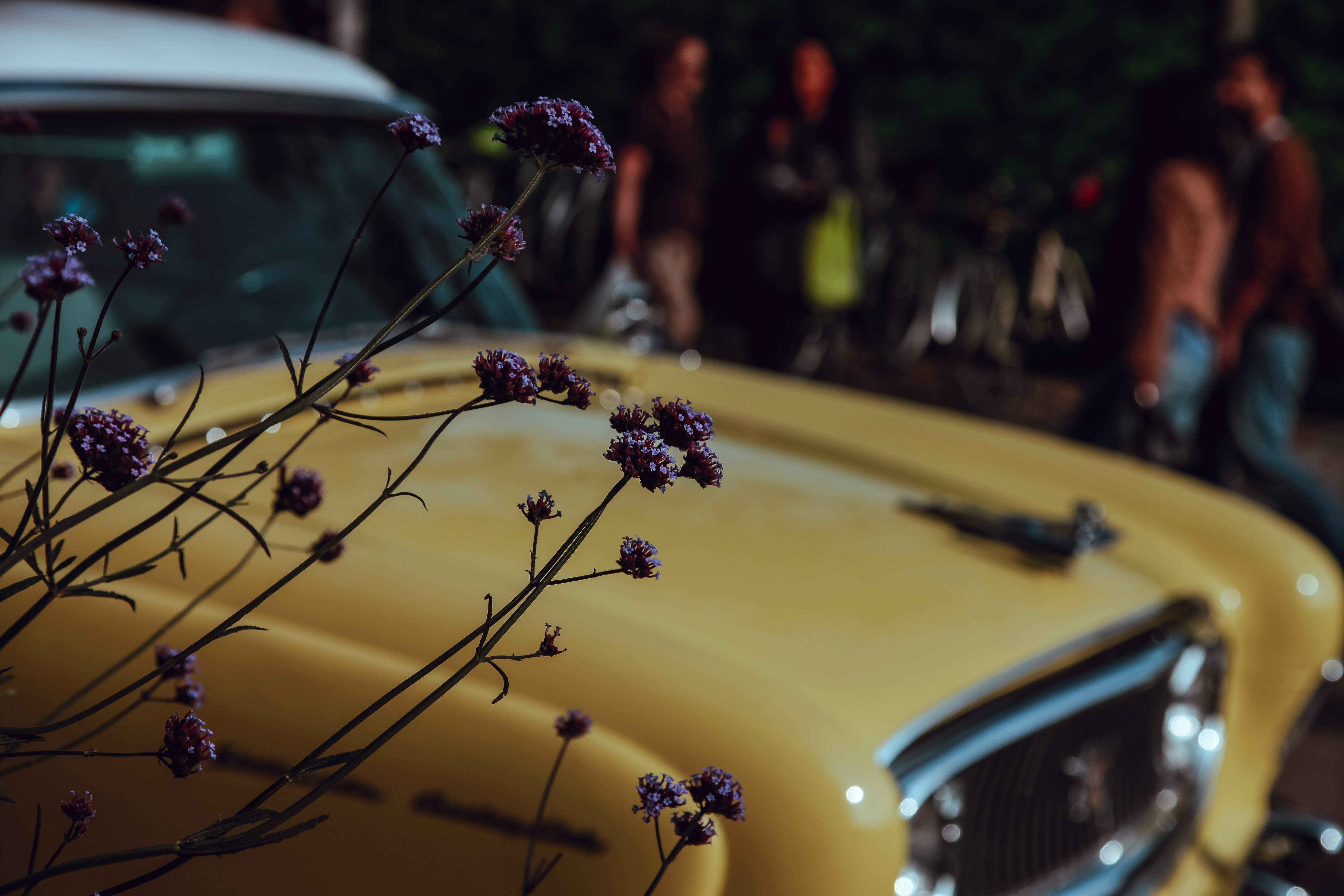 Out-of-focus shot of a vintage yellow car with flowers in front of it.