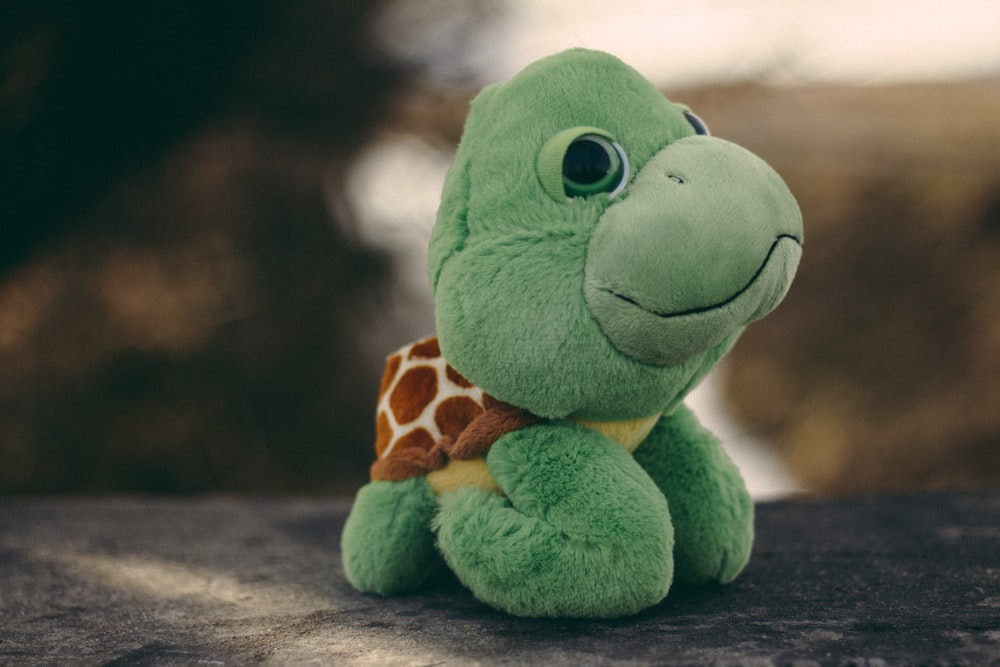 green frog plush toy on brown wooden table