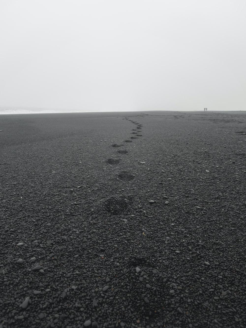 black sand and stones