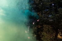 green trees with blue smoke