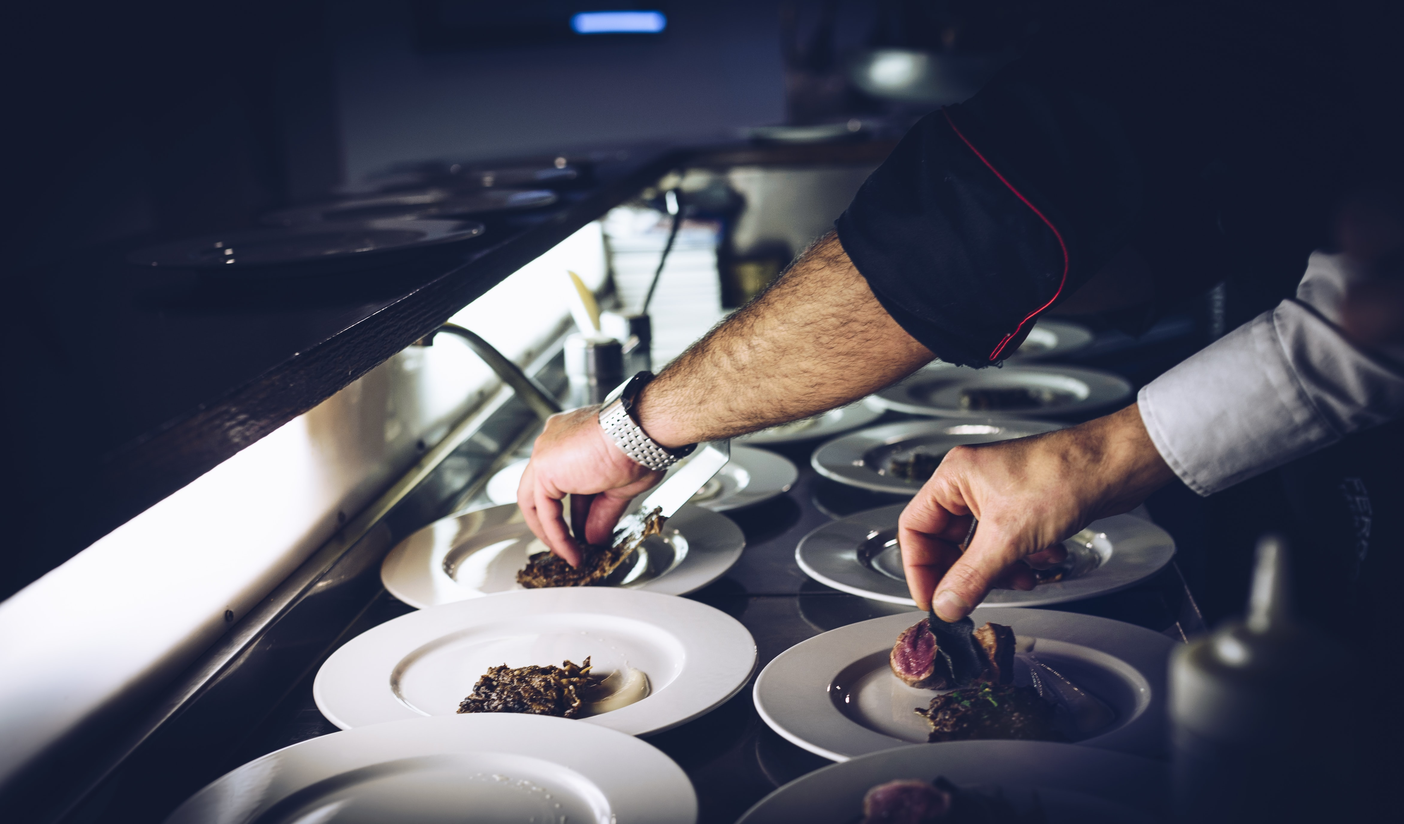 Chef and sous chef prepare gourmet meals in the kitchen