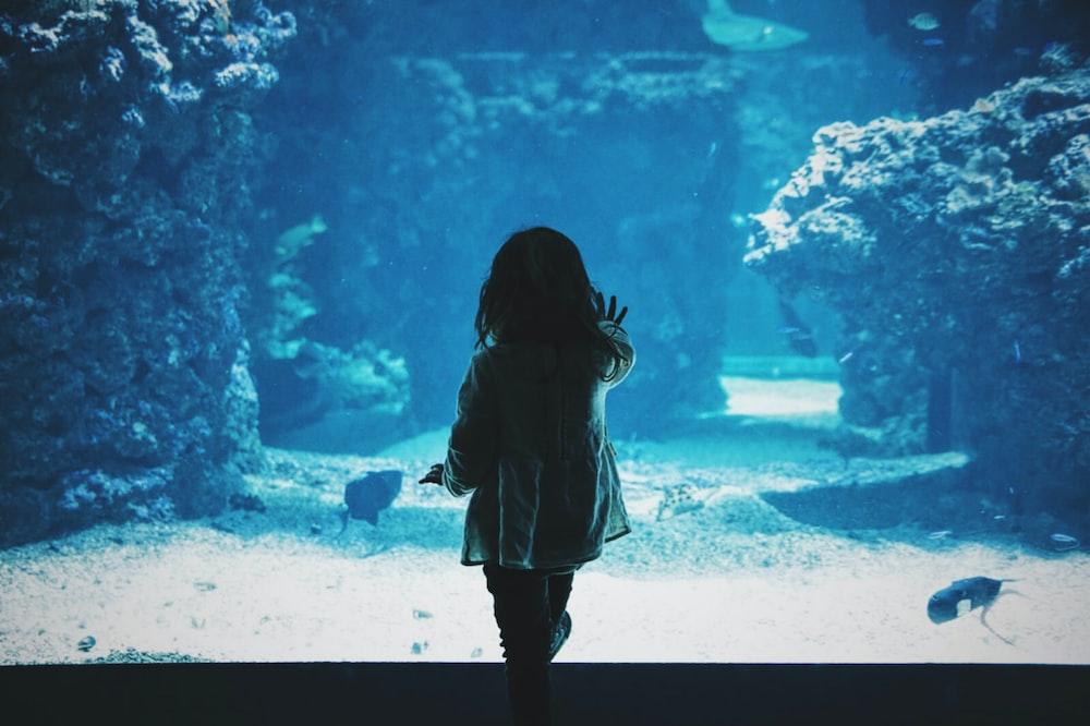 toddler girl touching glass tank