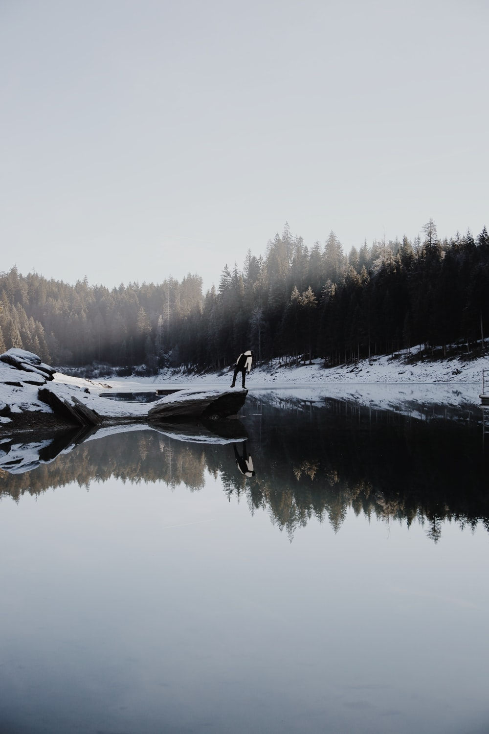 person beside lake near pine trees during daytime