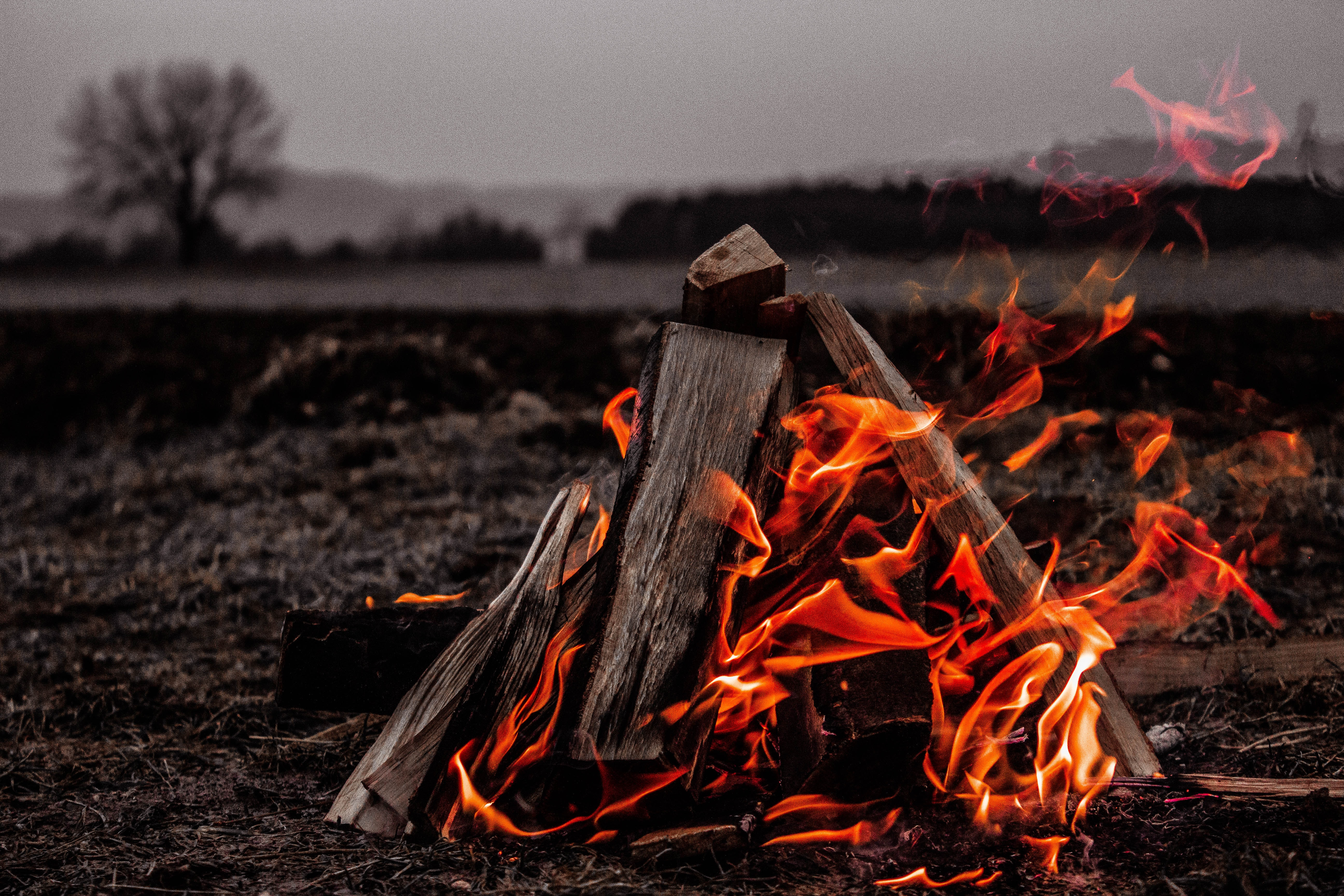 brown bonfire on gray field