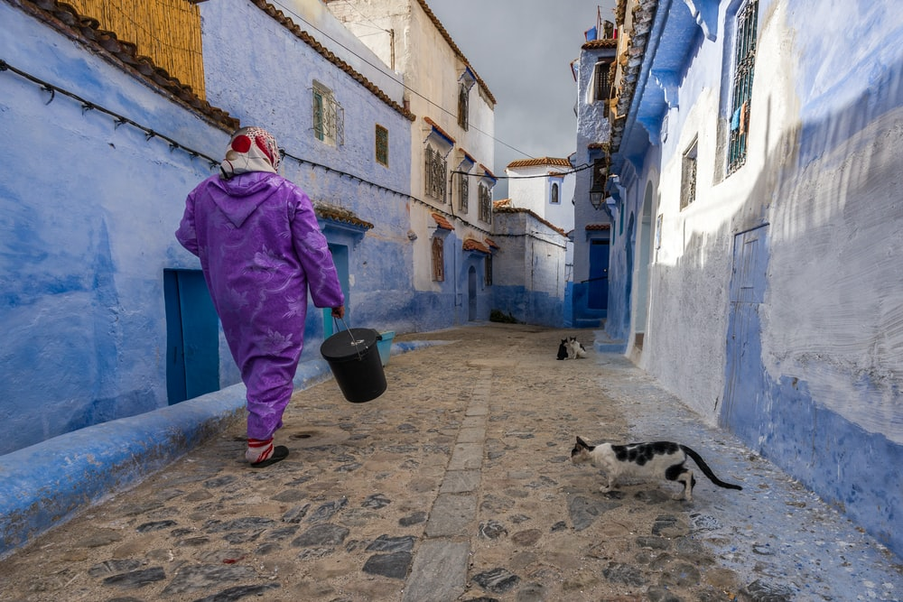 woman walking in the street with cat beside the house