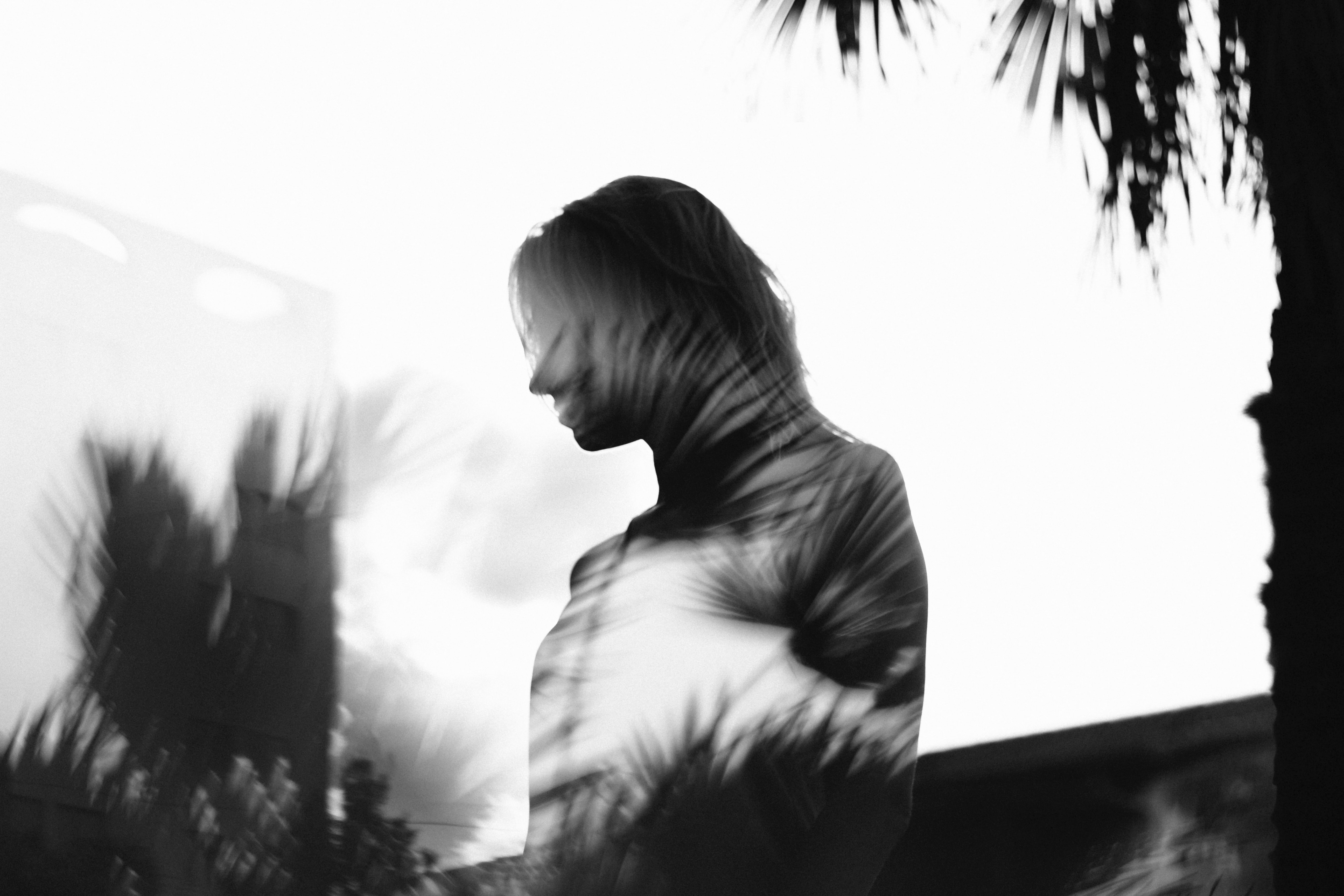 silhouette man with layered palm tree photograph