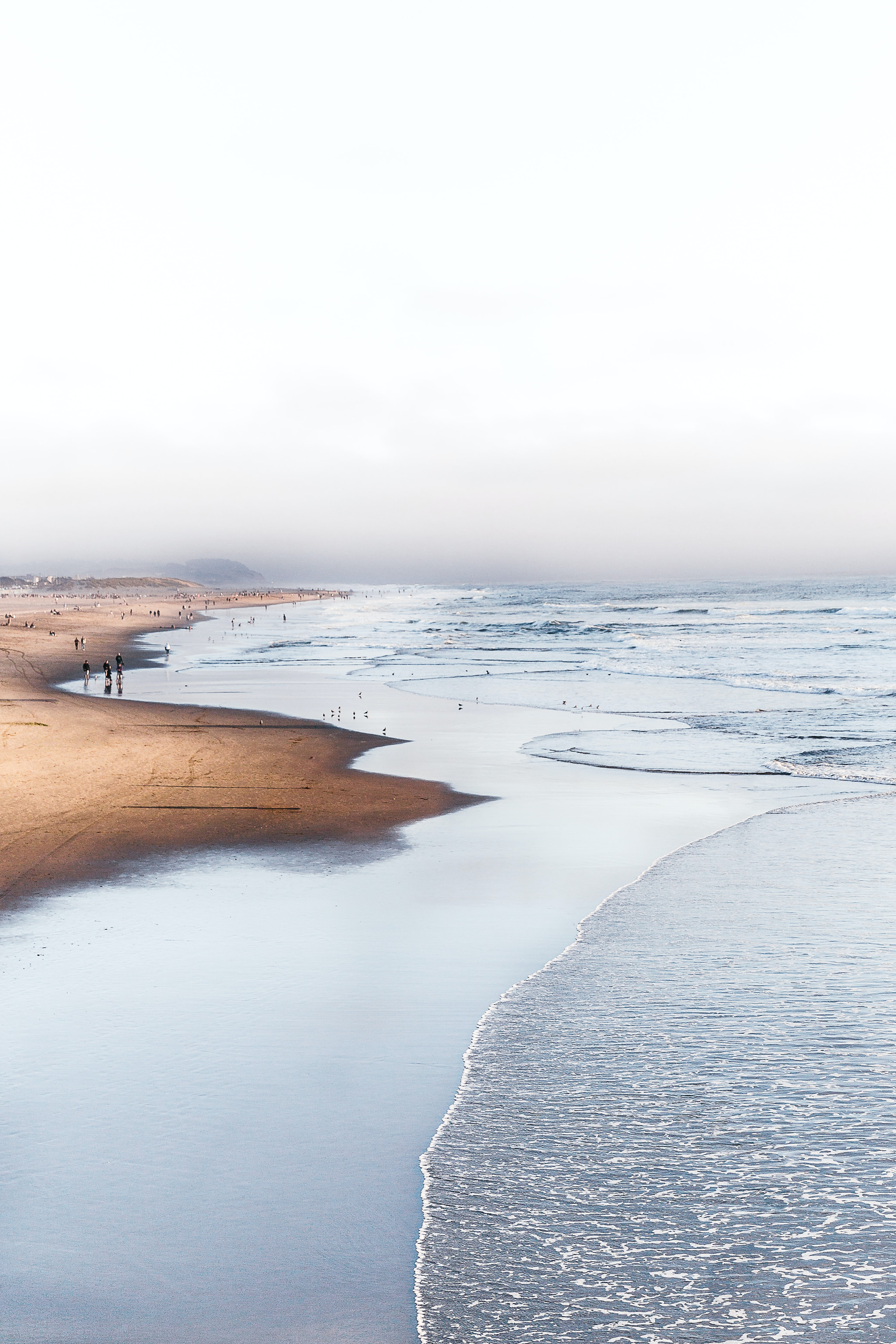 landscape photography of sea shore