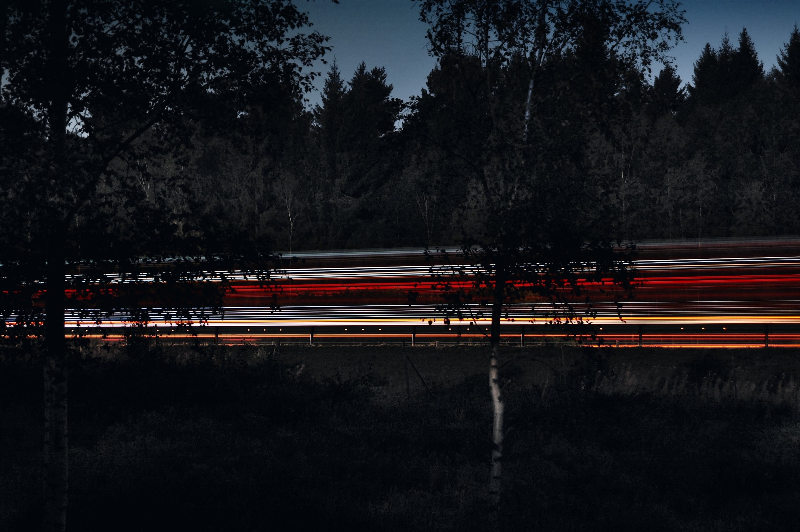 A night-time image showing vehicles in motion, taken from behind trees from the side of the road