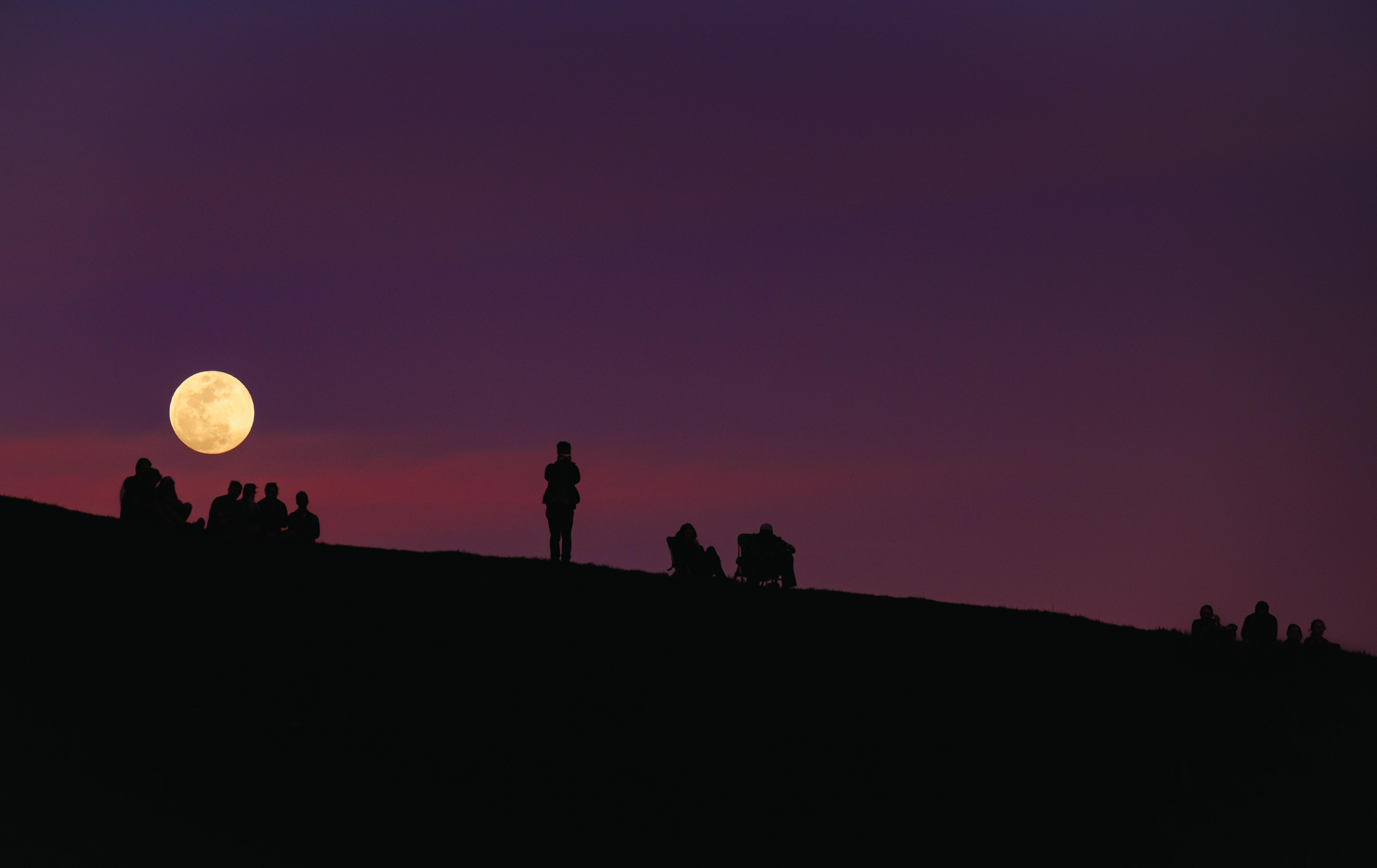 silhouette of group of people under purple night sky