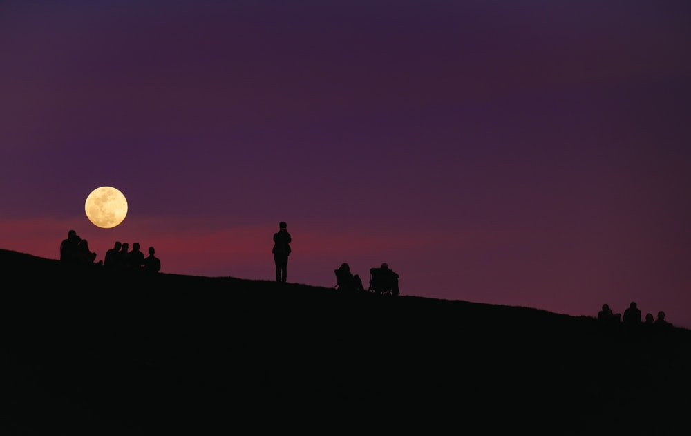 silhouette of group of people under purple night sky