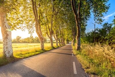 Road to Uzés