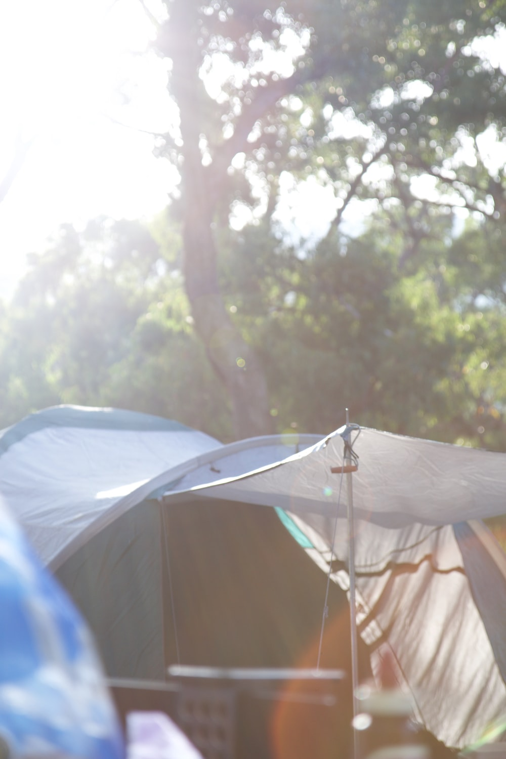 shallow focus photography of white and gray tent