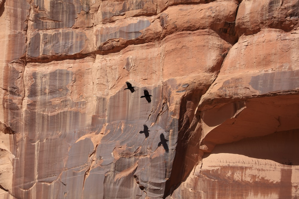 person in black jacket climbing brown rock formation during daytime