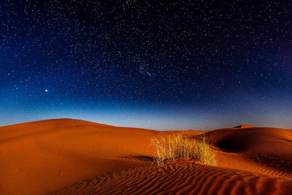 desert during nighttime