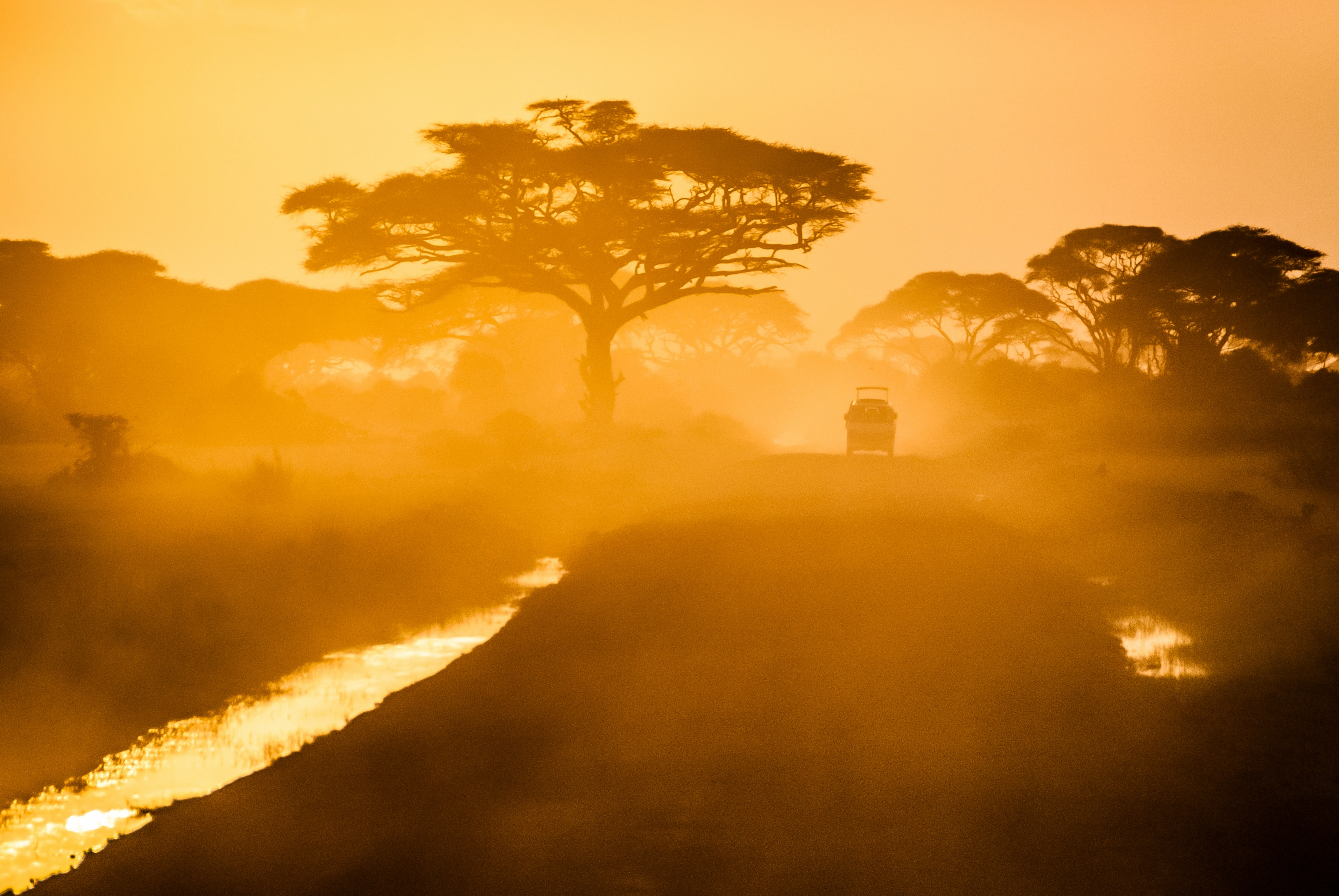 A vehicle driving down a lane and kicking up dust in Kajiado, with silhouetted trees and a stream in the foreground