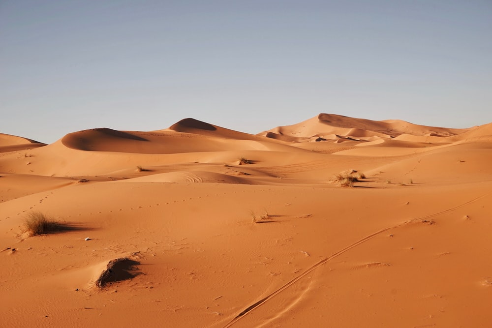 landscape photography of desert (travel Morocco)