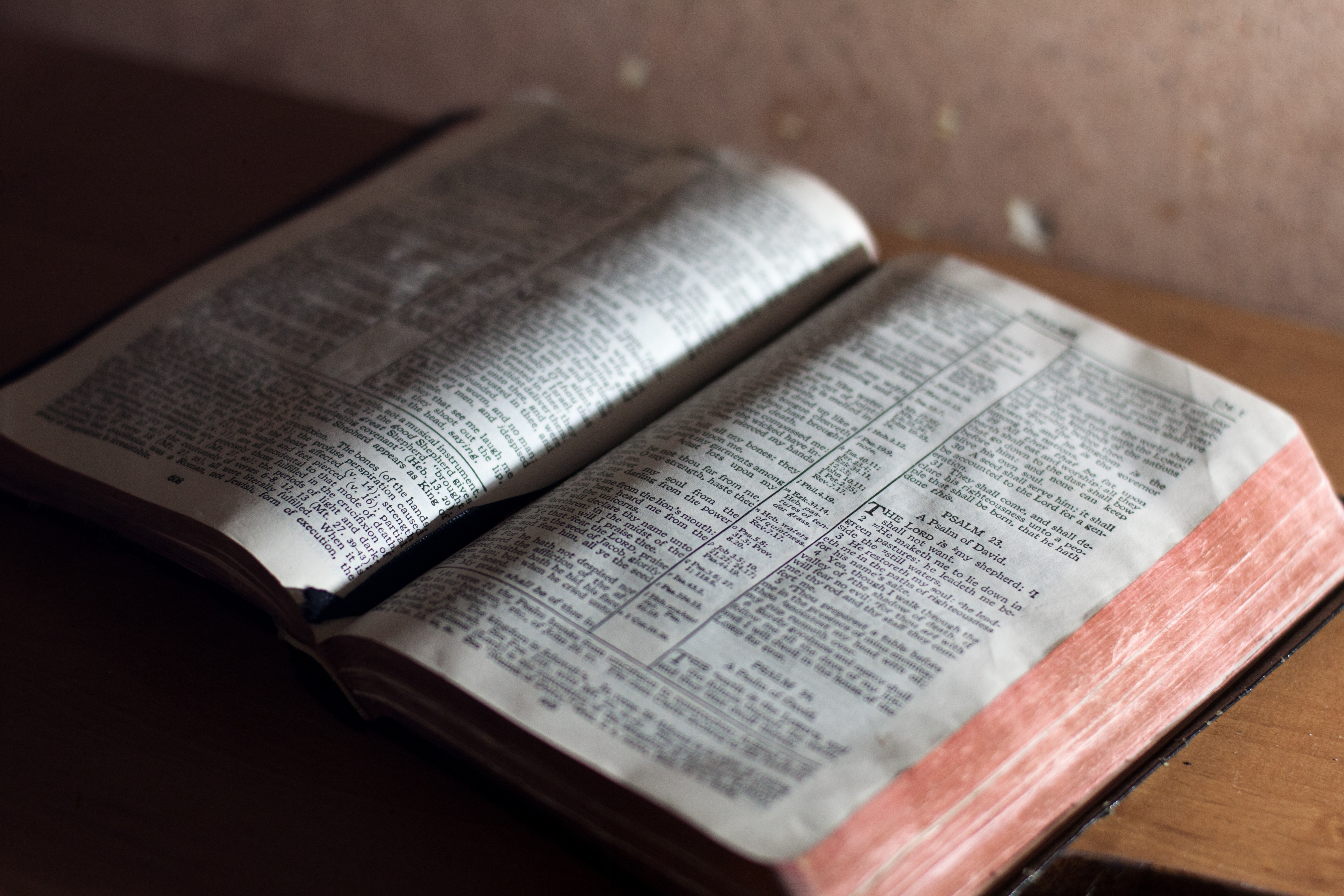 Old vintage bible with worn pages open to a reading