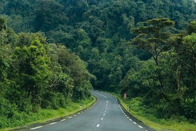 road near forest rwanda teams background