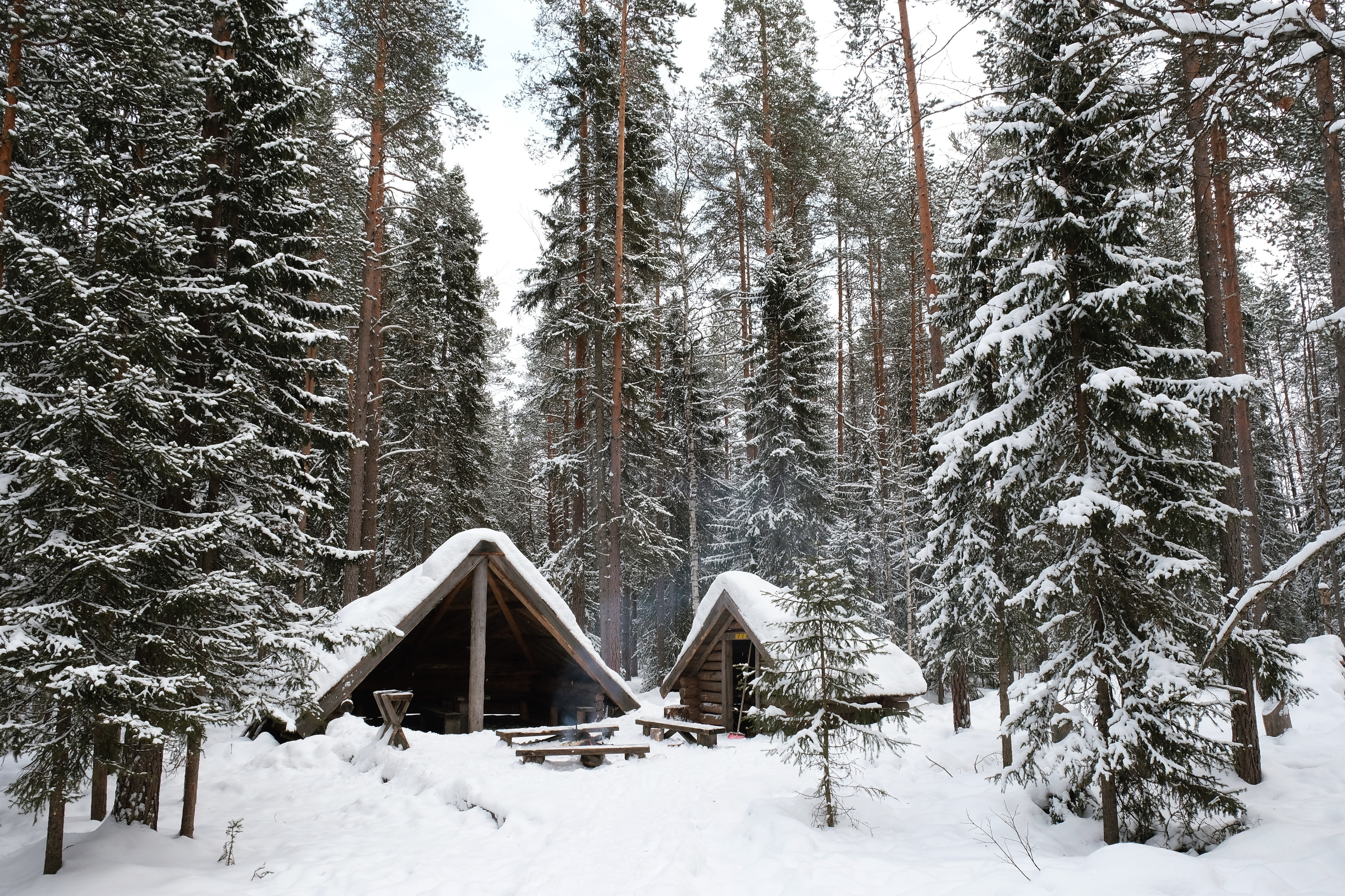 Looking at small cabins inside a forest in Rovaniemi during the cold winter months in Finland