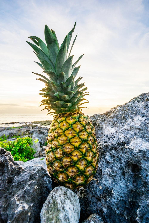 yellow pineapple fruit on grey stones