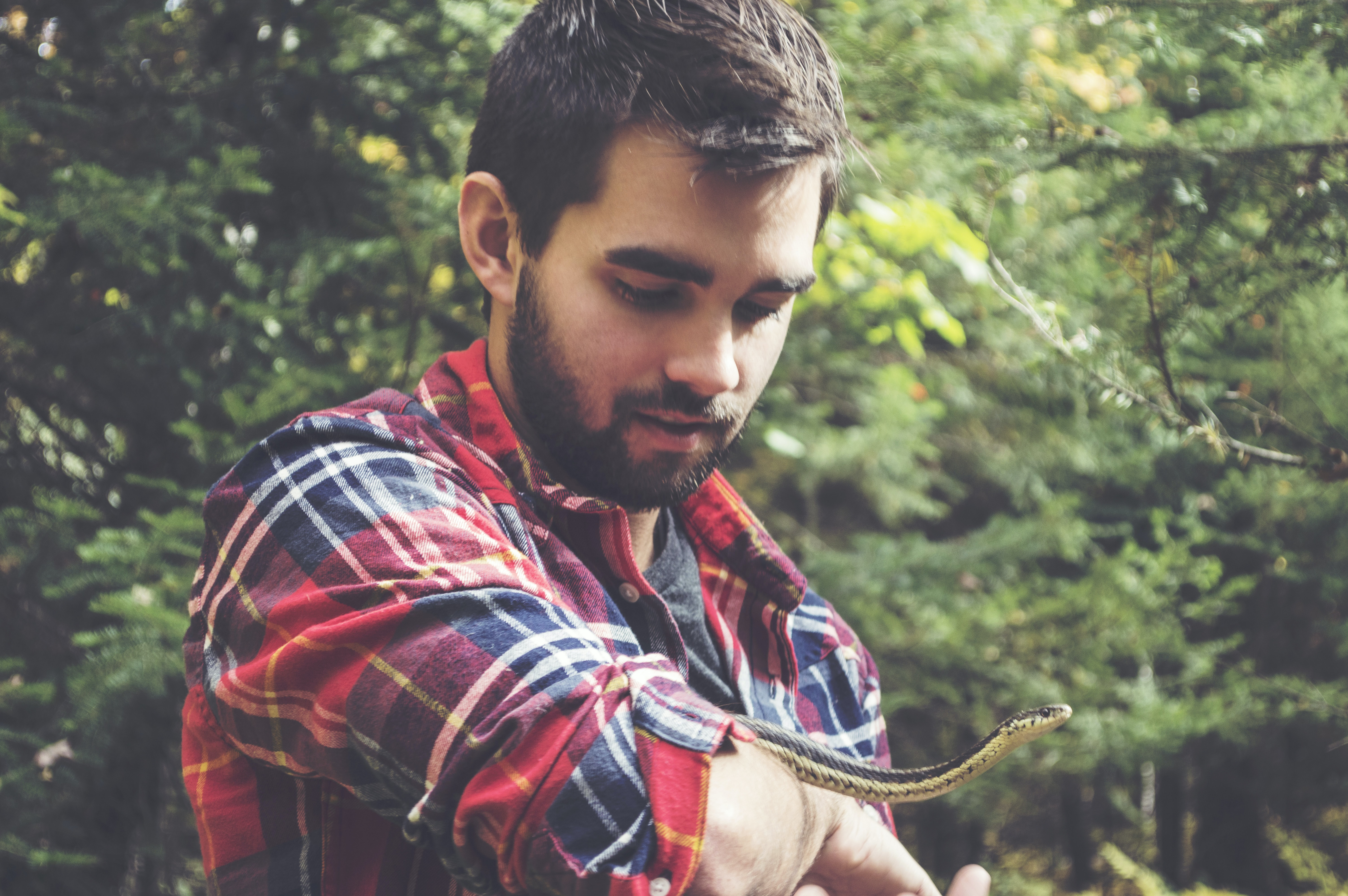 A bearded man in a wooded area looks down, holding a snake on his arm