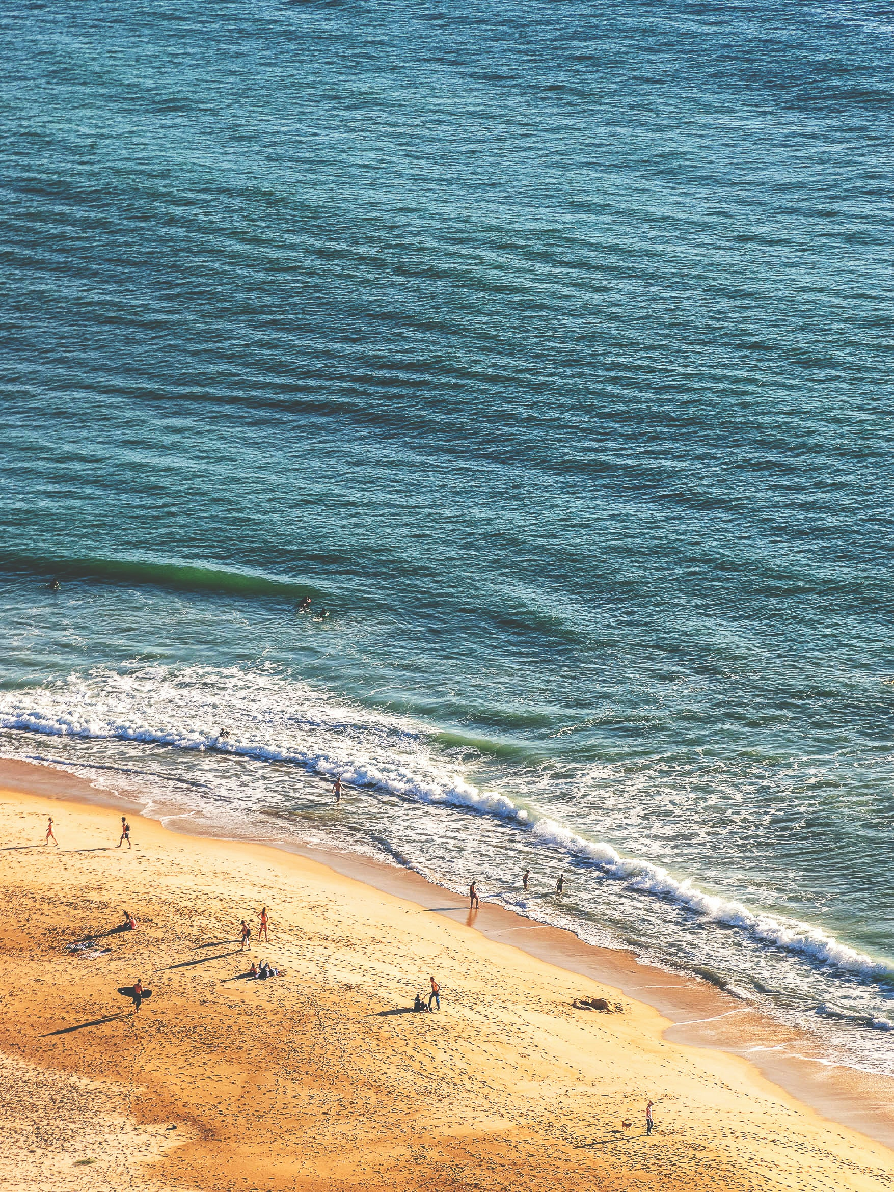 people standing in seashore aerial photography