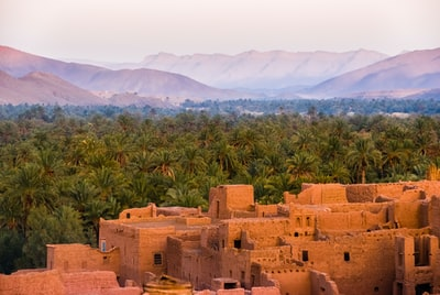 concrete houses surrounded by trees morocco zoom background