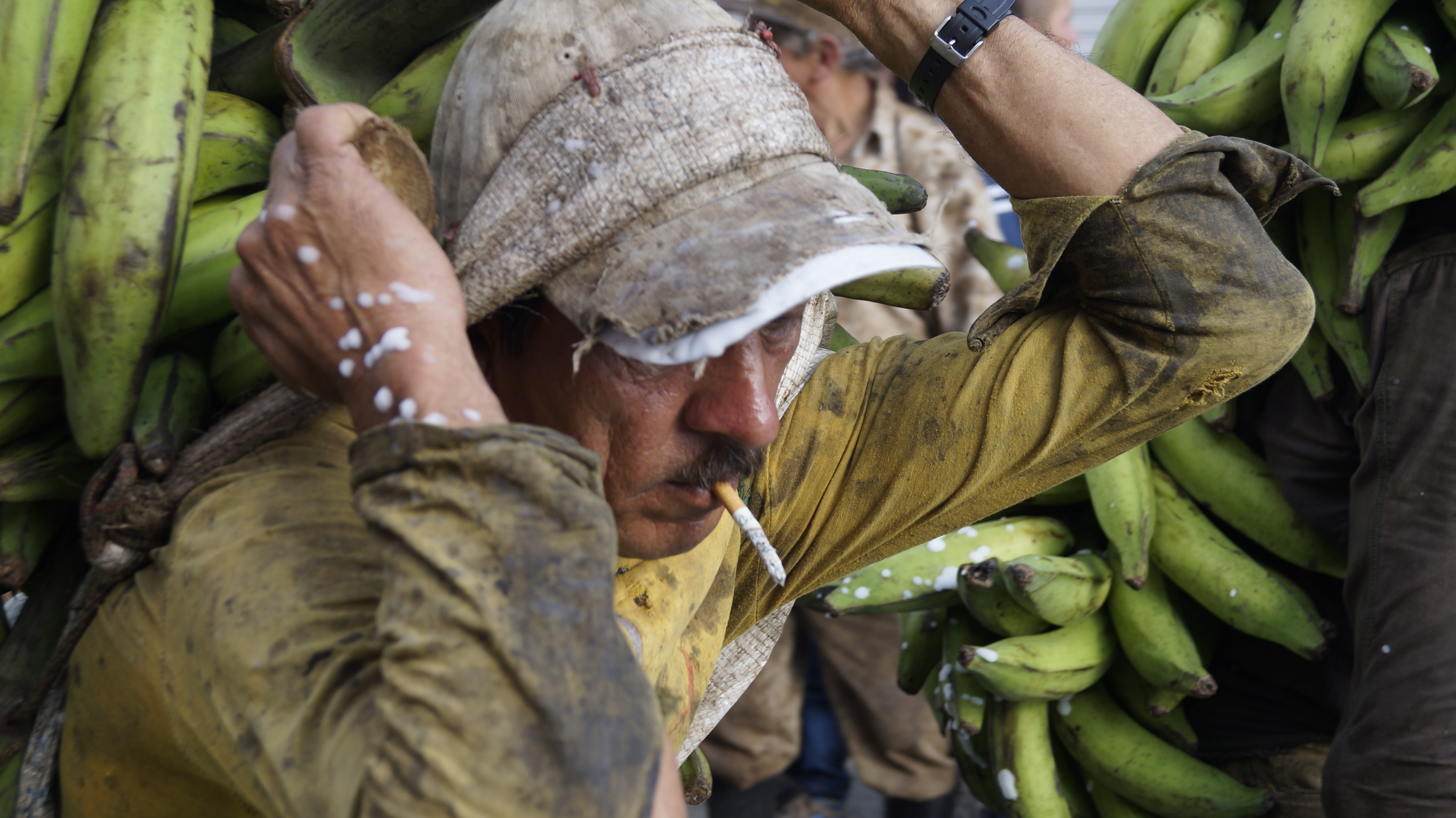 man with cigarette on mouth carrying bananas on his back
