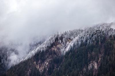 1275. Ködös tájakon