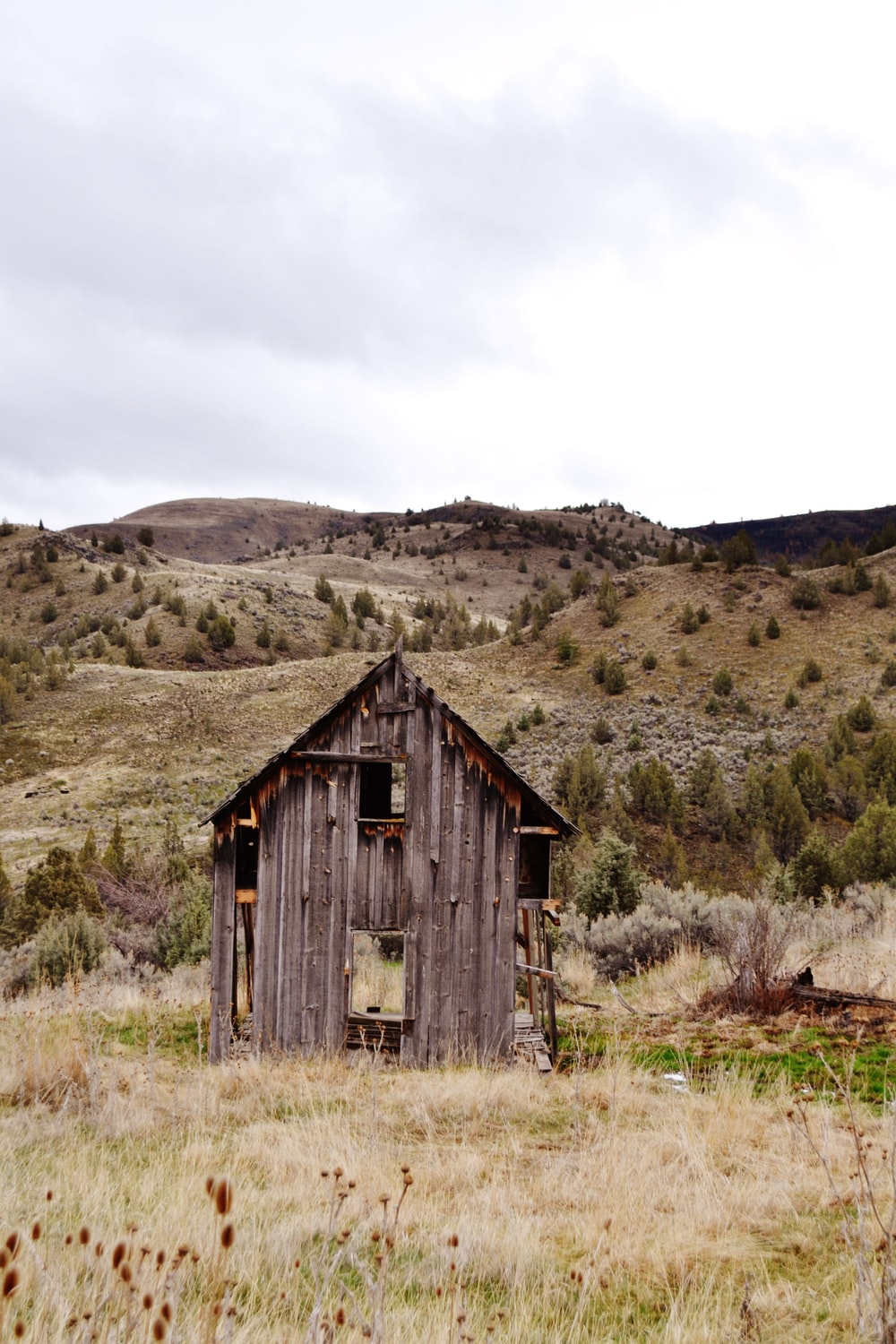 brown wooden shed on mountain