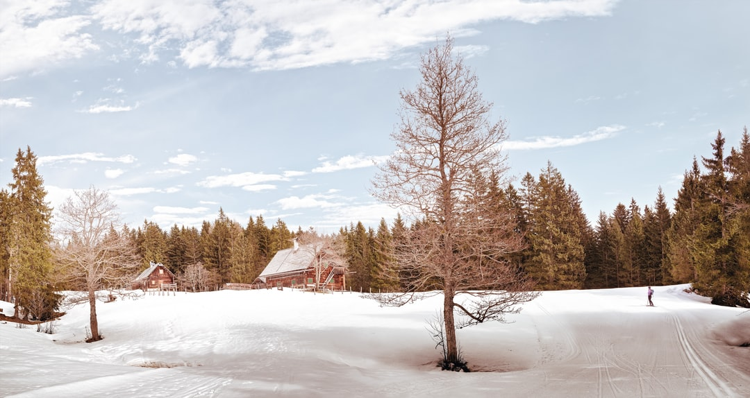 Spring is on its way — Only more once cross-country skiing. Then we will be ready.