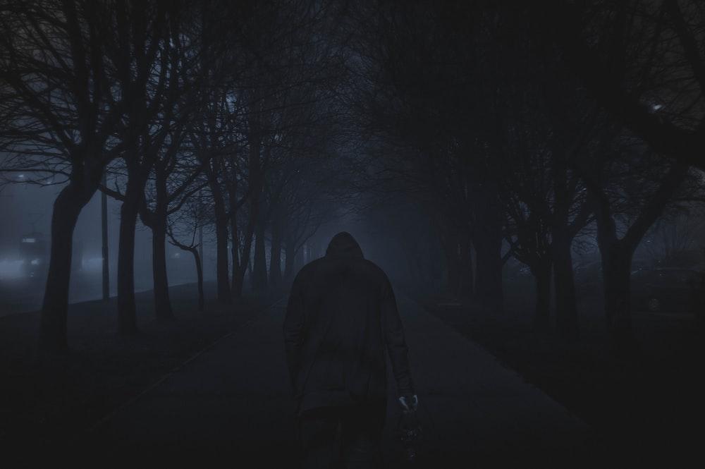 person walking between trees