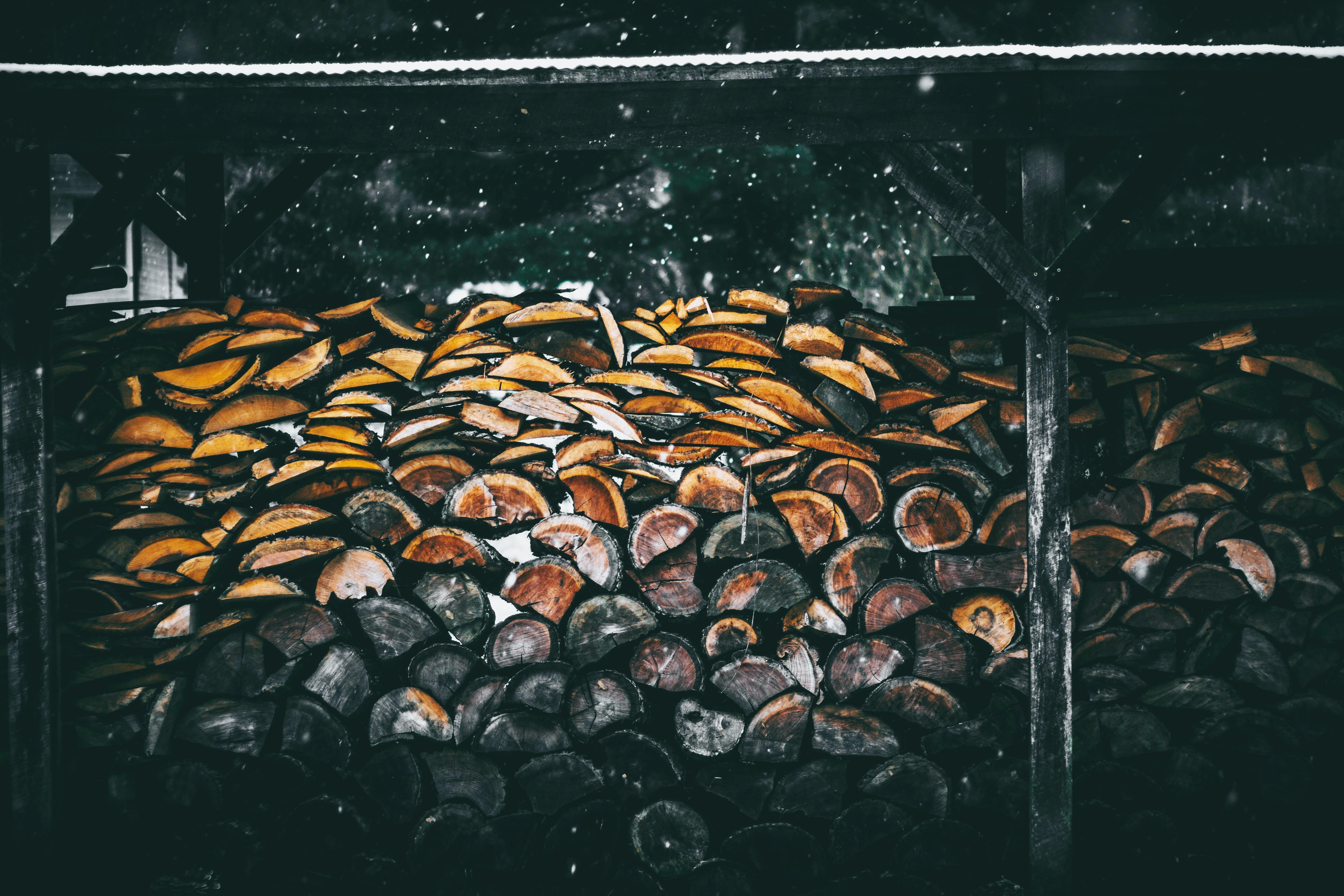 brown log painting