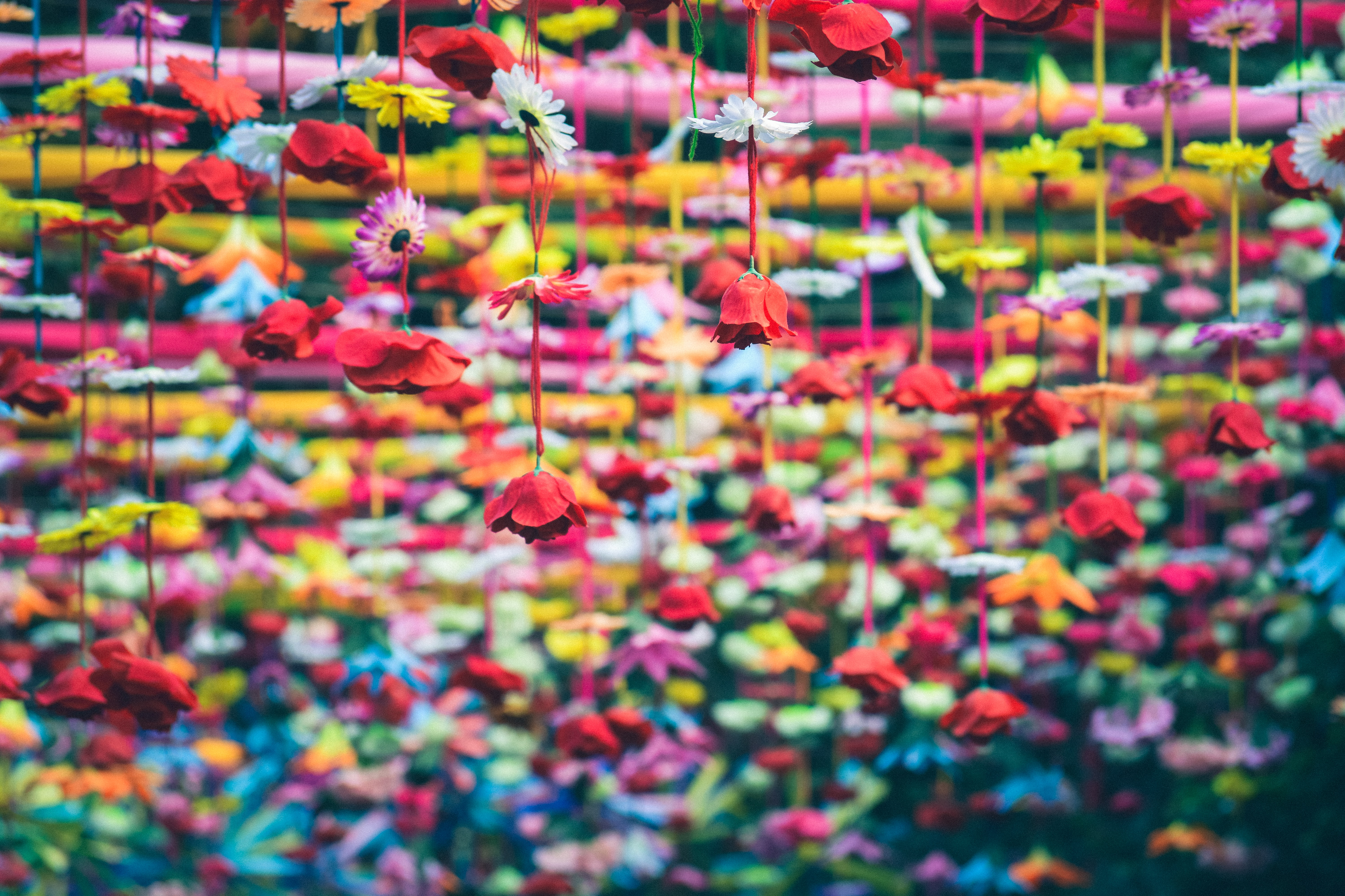 Decorative fake flowers in various colors hanging from above