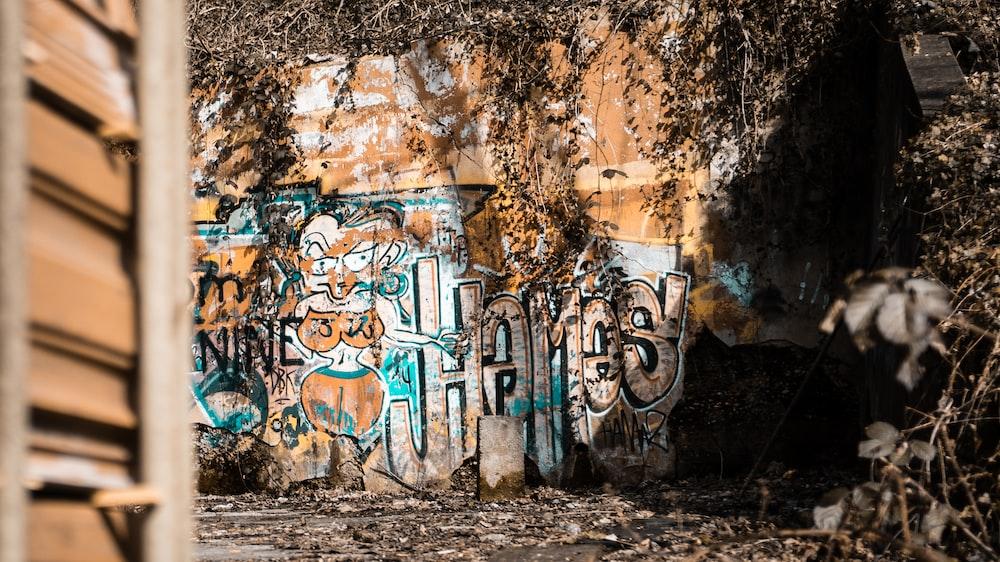 landscape photography of mural paints