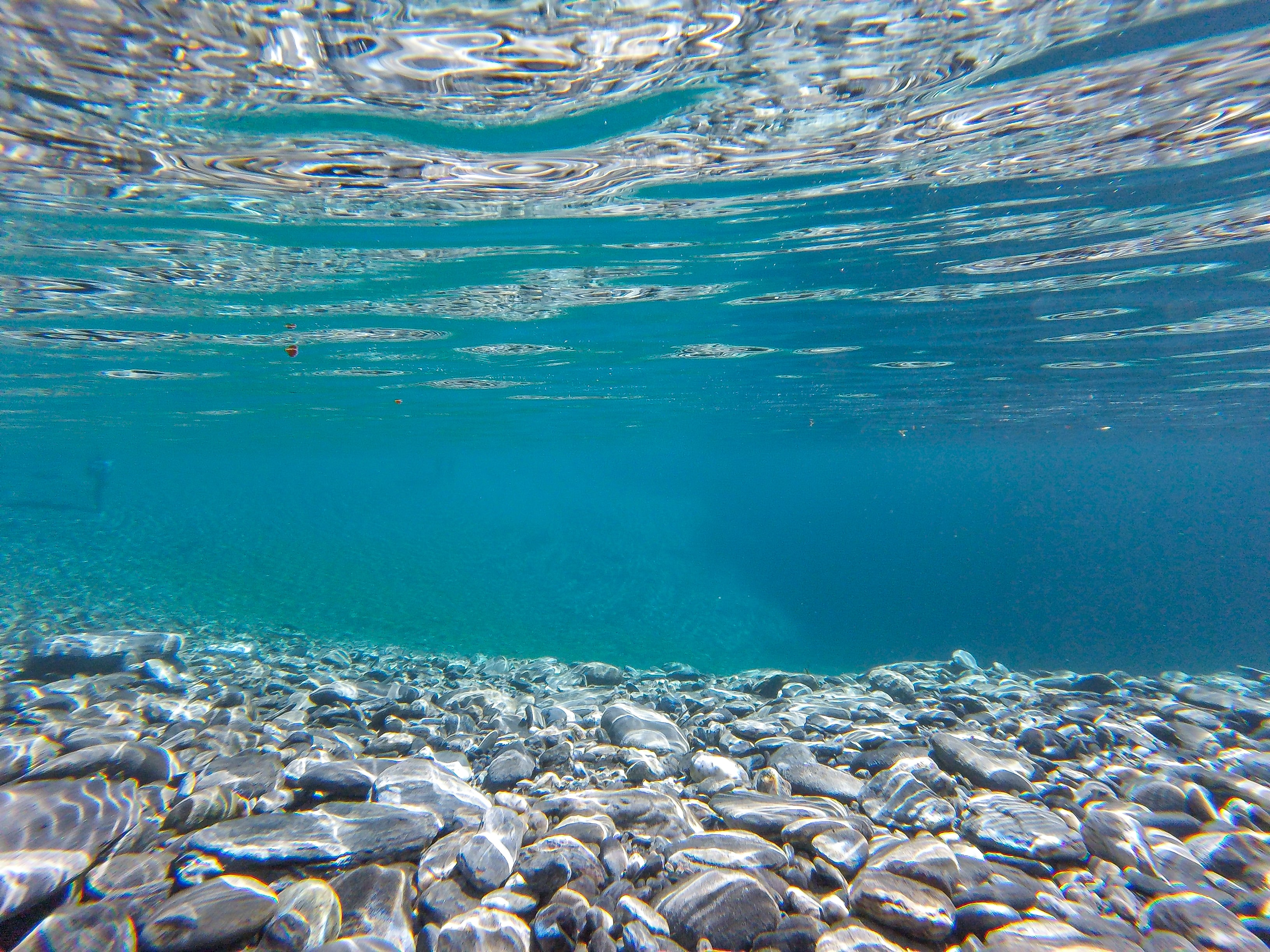 shallow focus photography of rocks under water