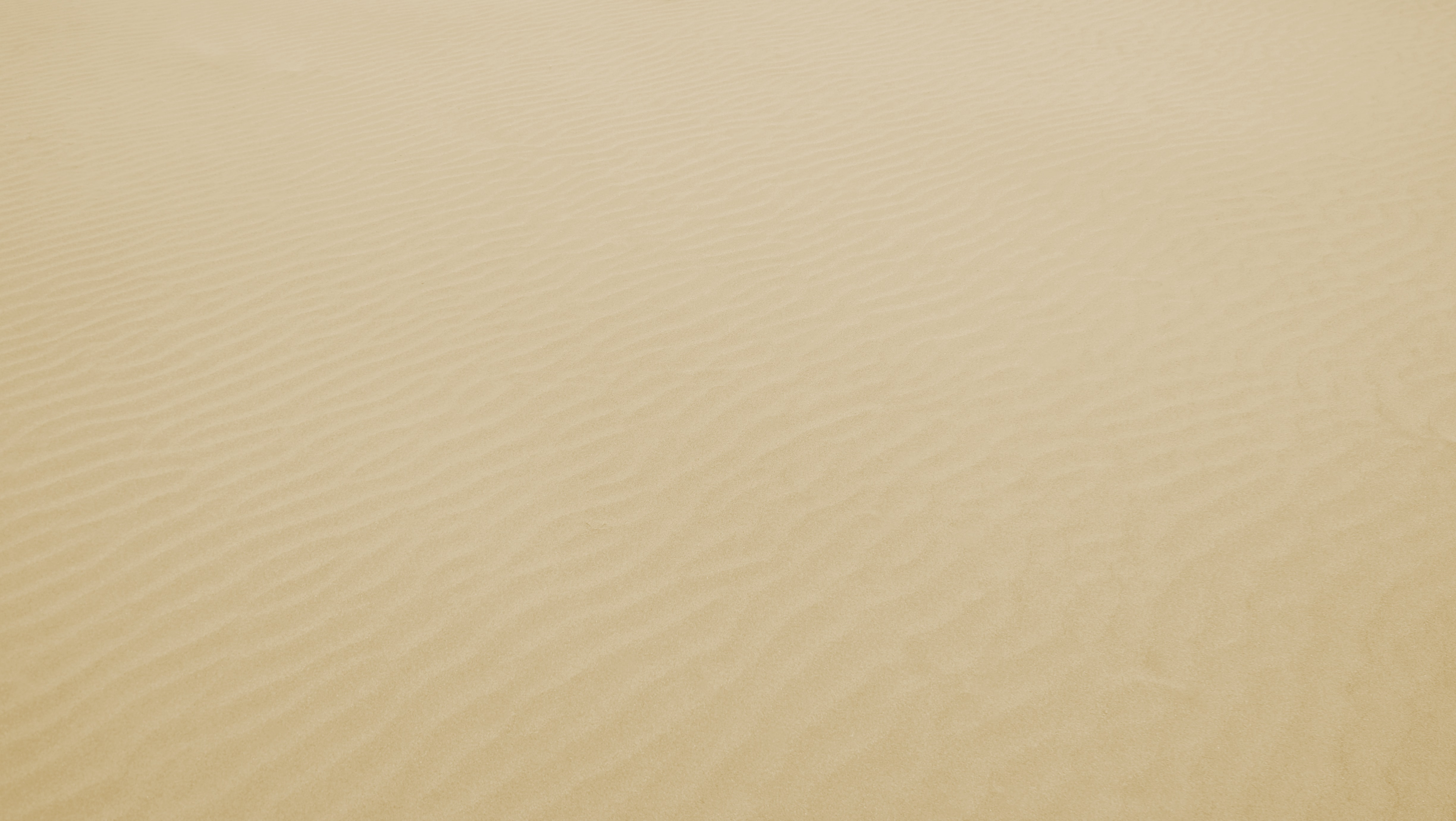 bird's eye view of desert