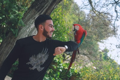 man in black crew neck shirt holding red and blue bird