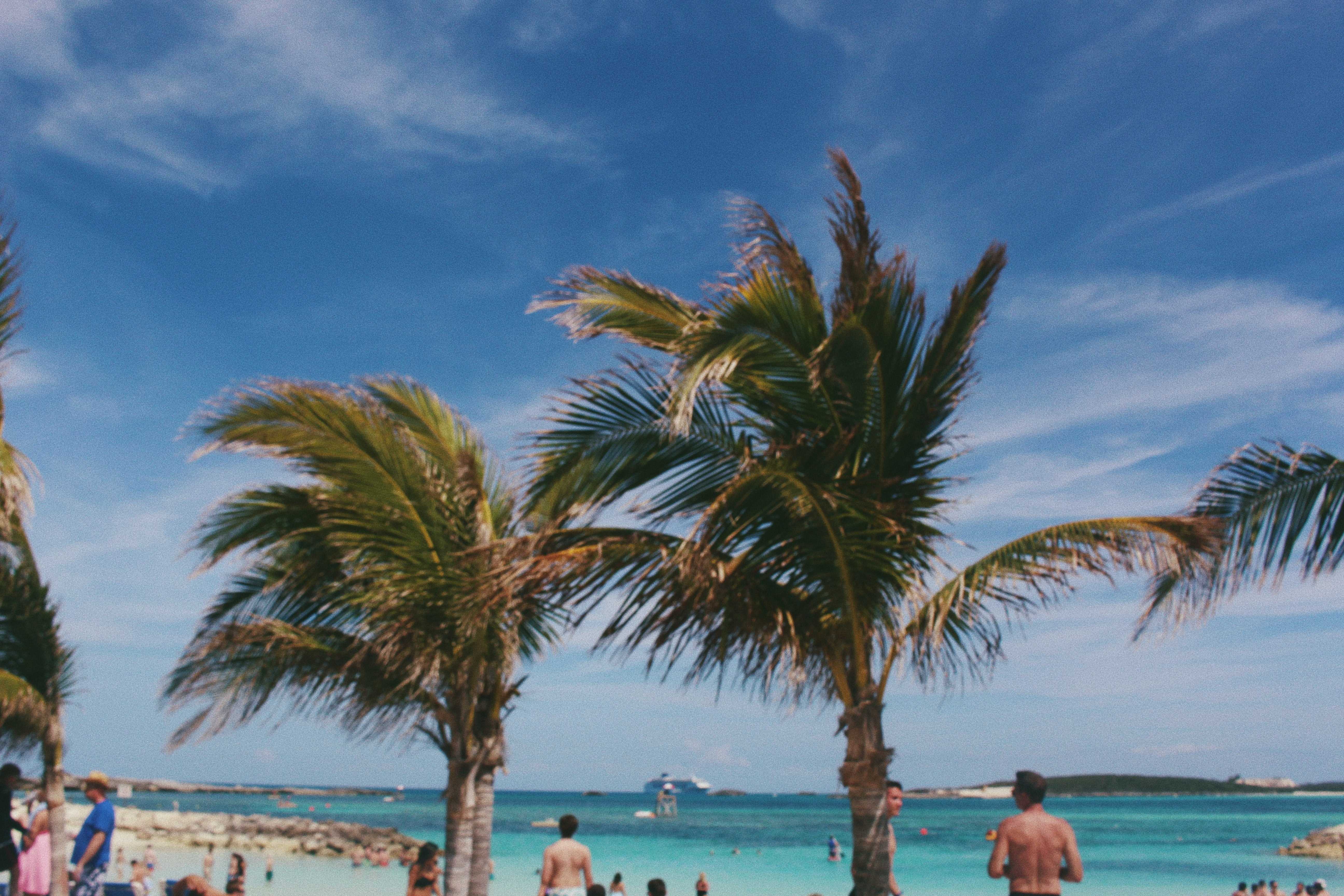 Palm trees swaying in the breeze over a crowded beach