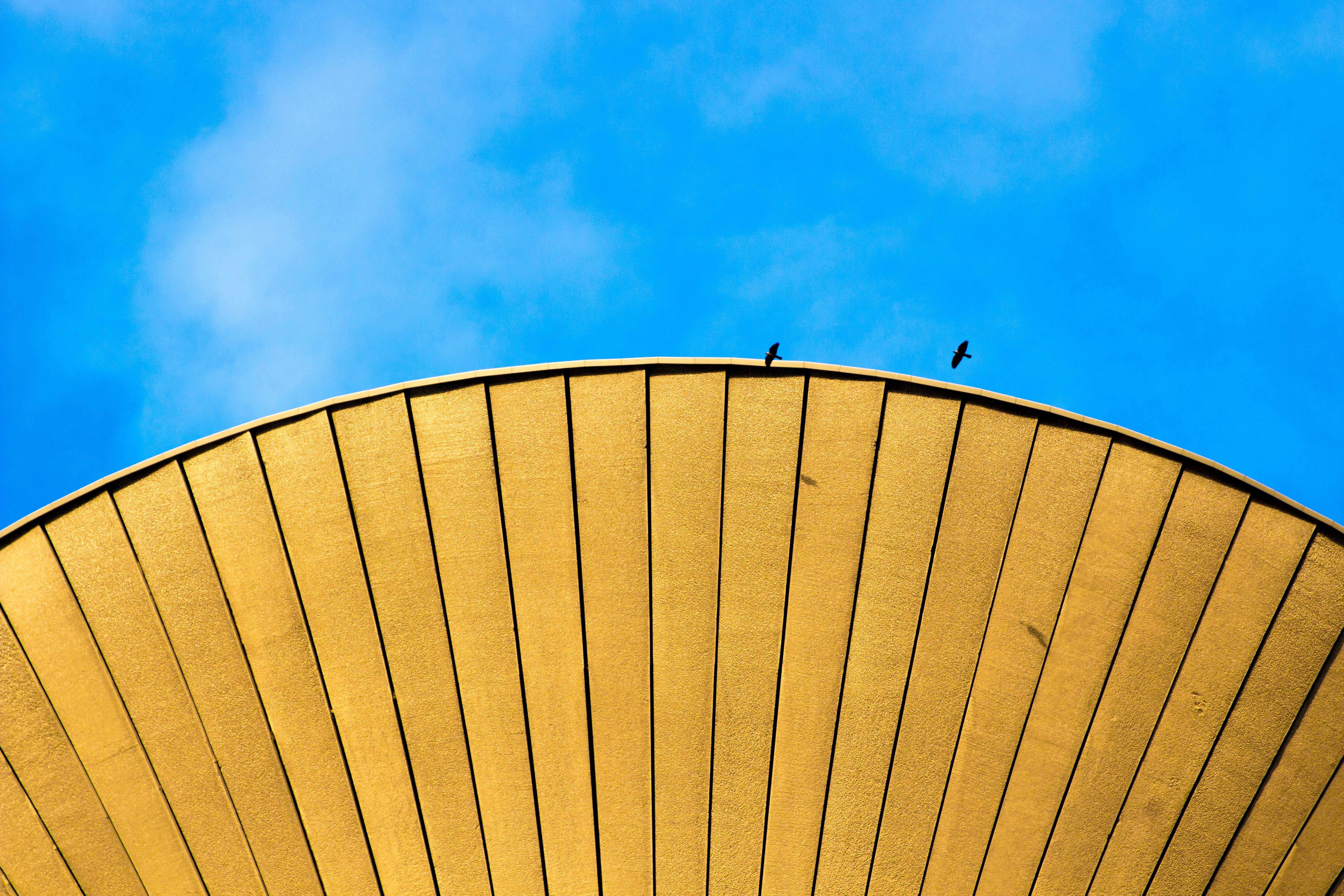 yellow oil umbrella under blue sky