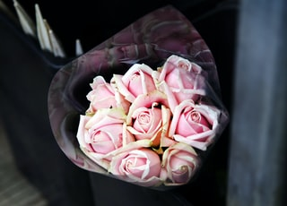 shallow focus photography of pink bouquet of flowers
