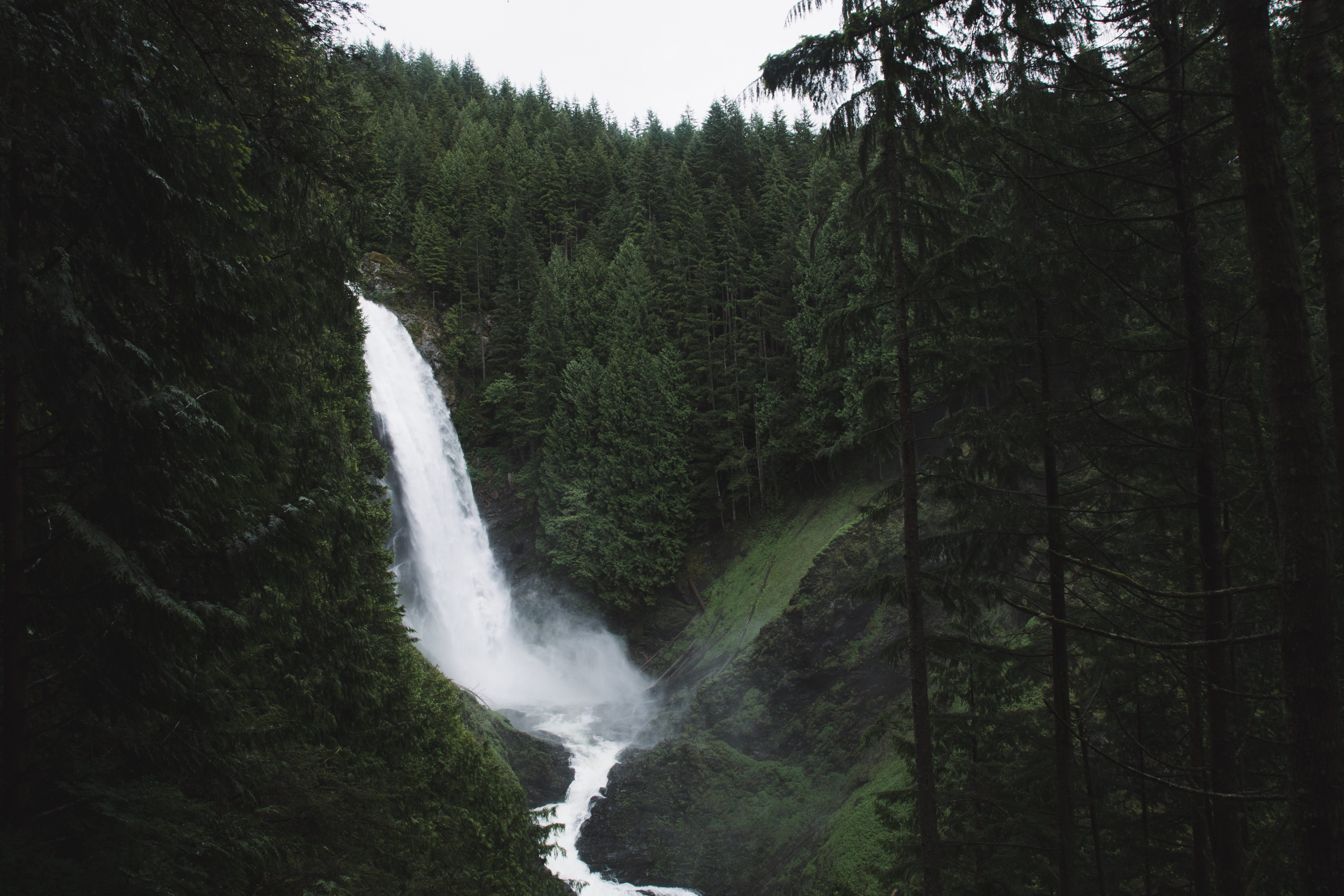 A waterfall in a recess in the middle of a forest