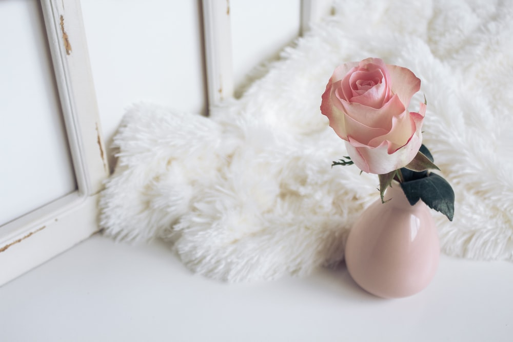 white artificial flower