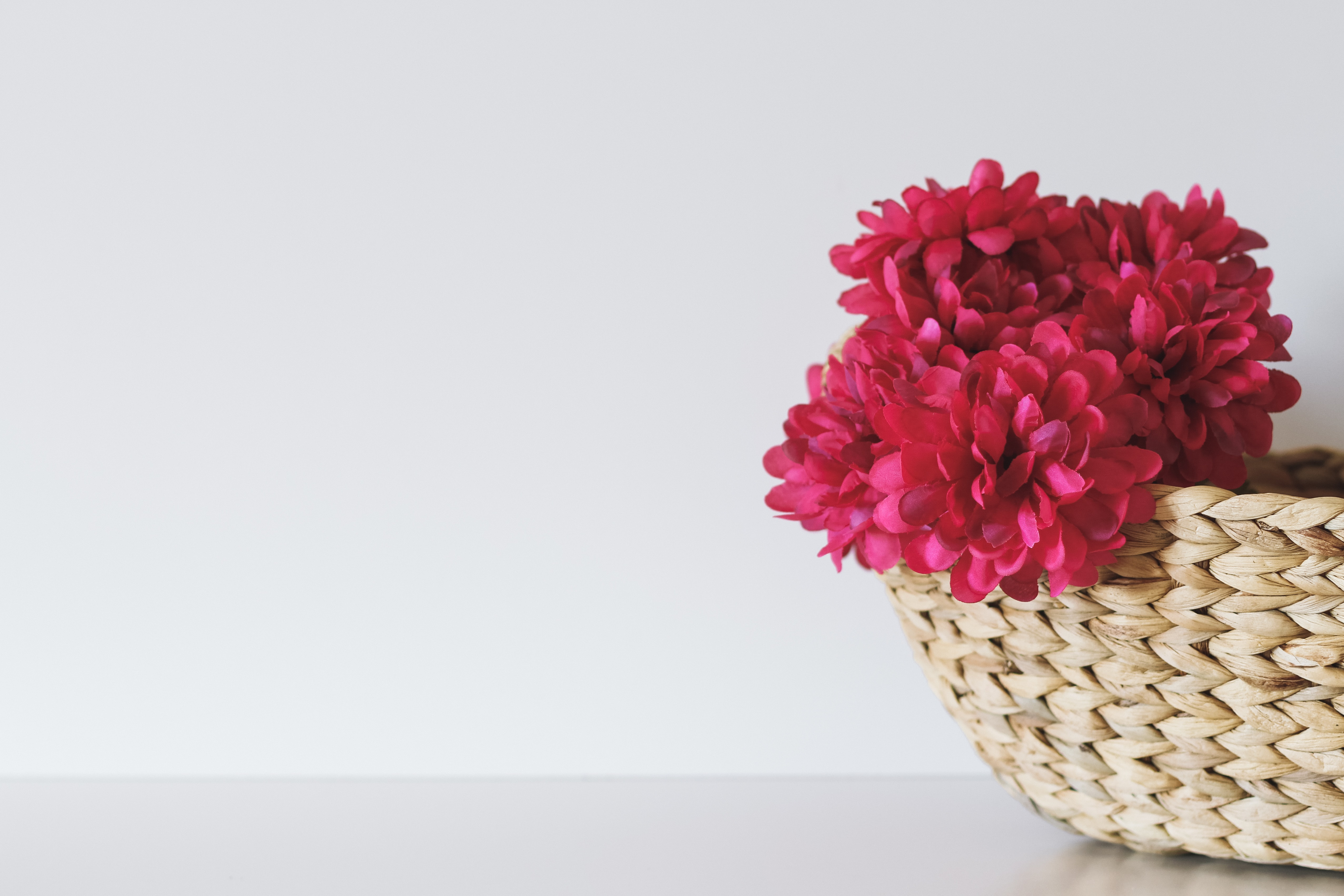 Red flowers in a wicker basket against a white background