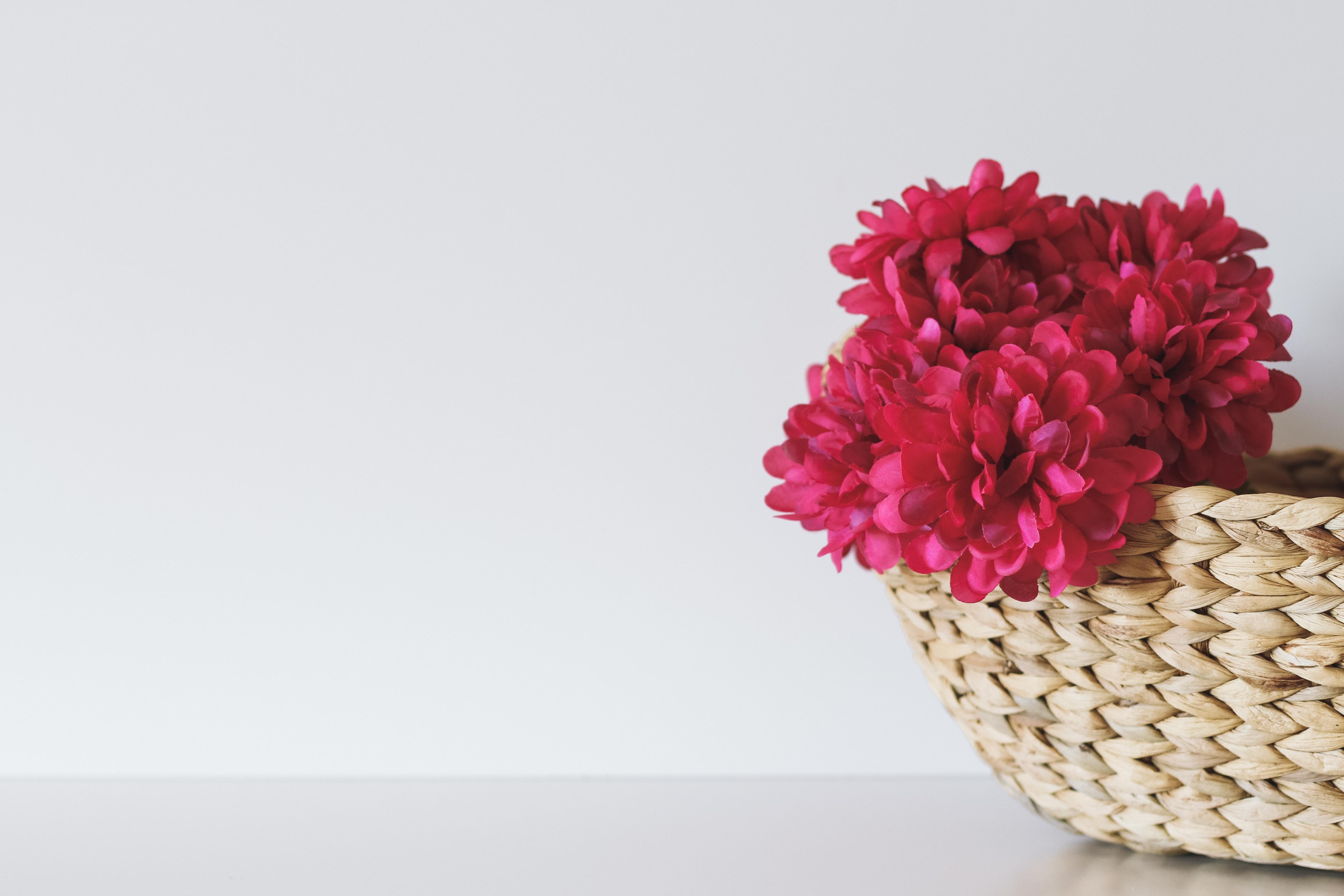 pink petaled flower inside brown wicker basket
