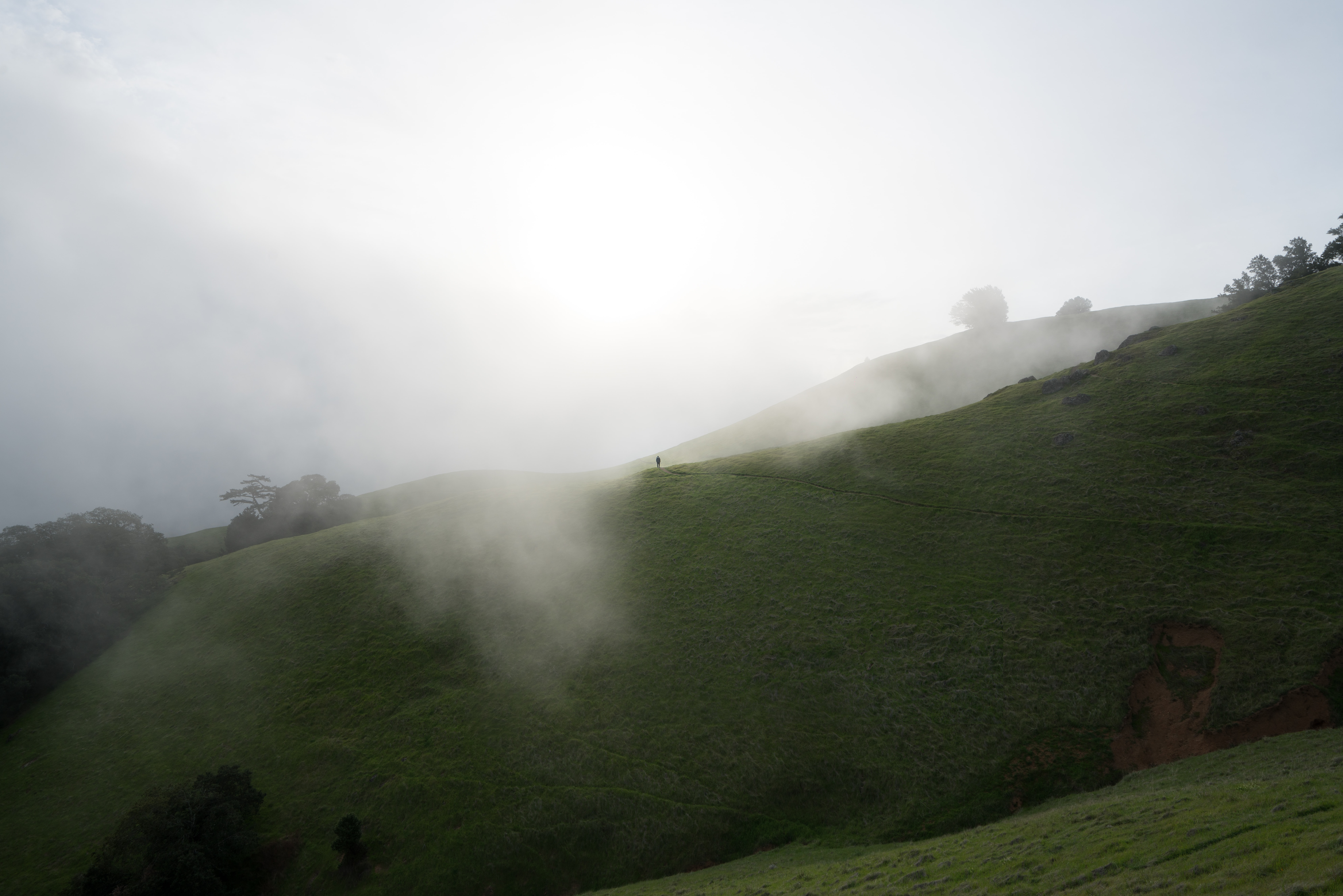 Fog on a misty morning over rolling green hills